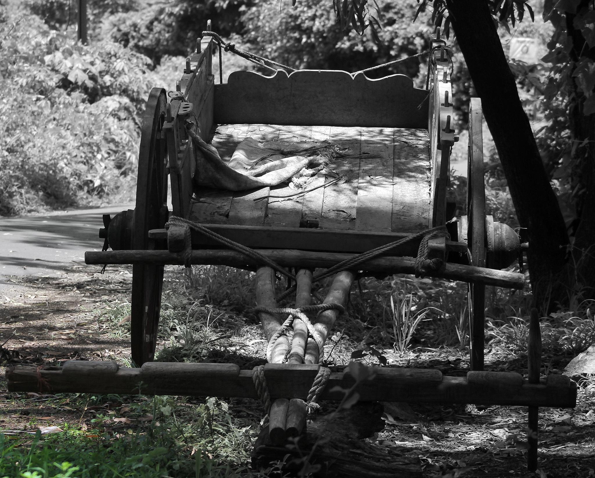 Cart by Amit K