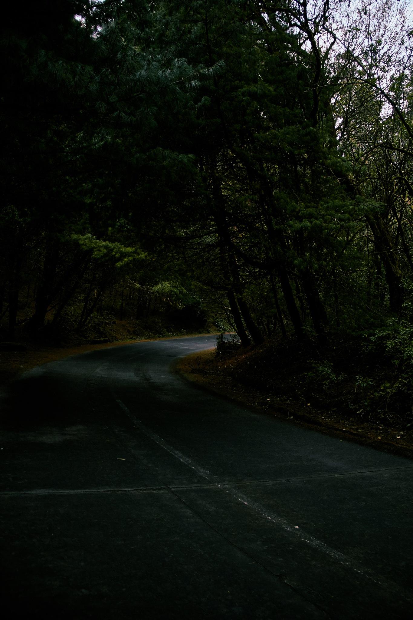 Photo in Landscape #highway #terror #horror #film #dark #ghosts