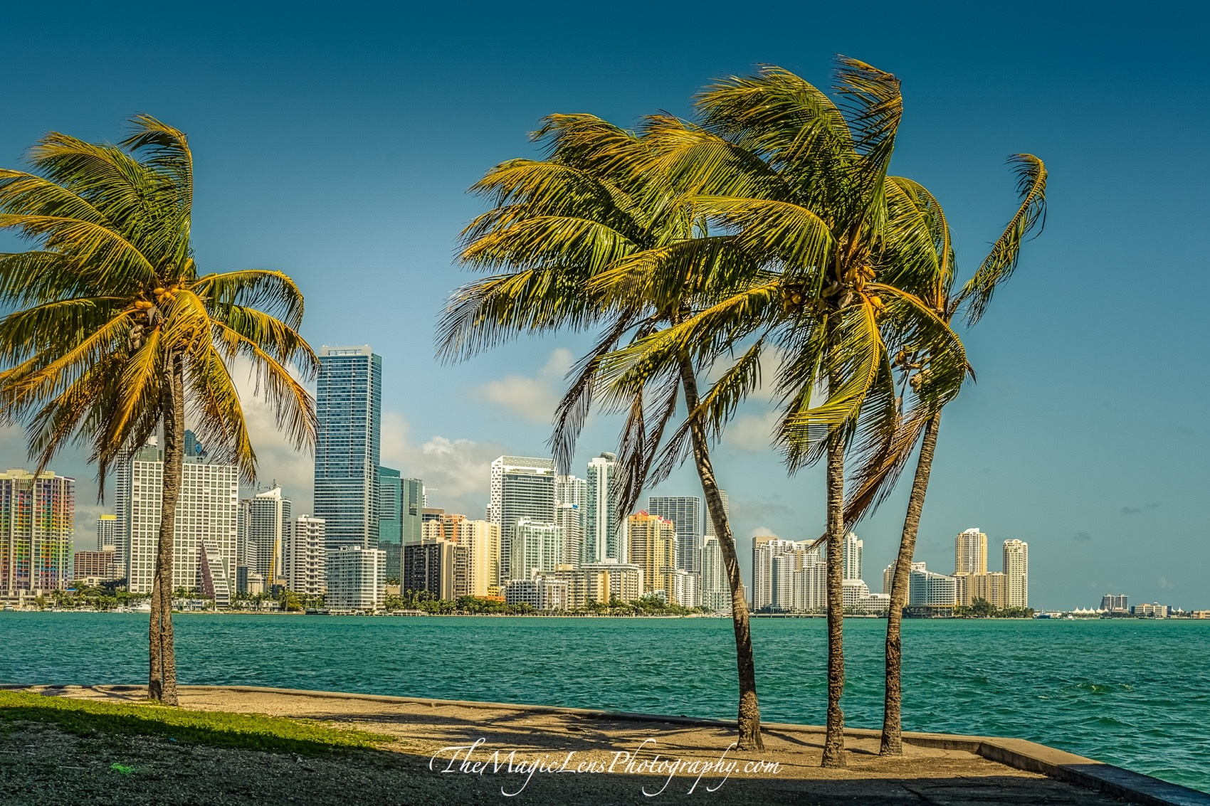 City of Miami. Capital of the Sun by themagiclensphotography