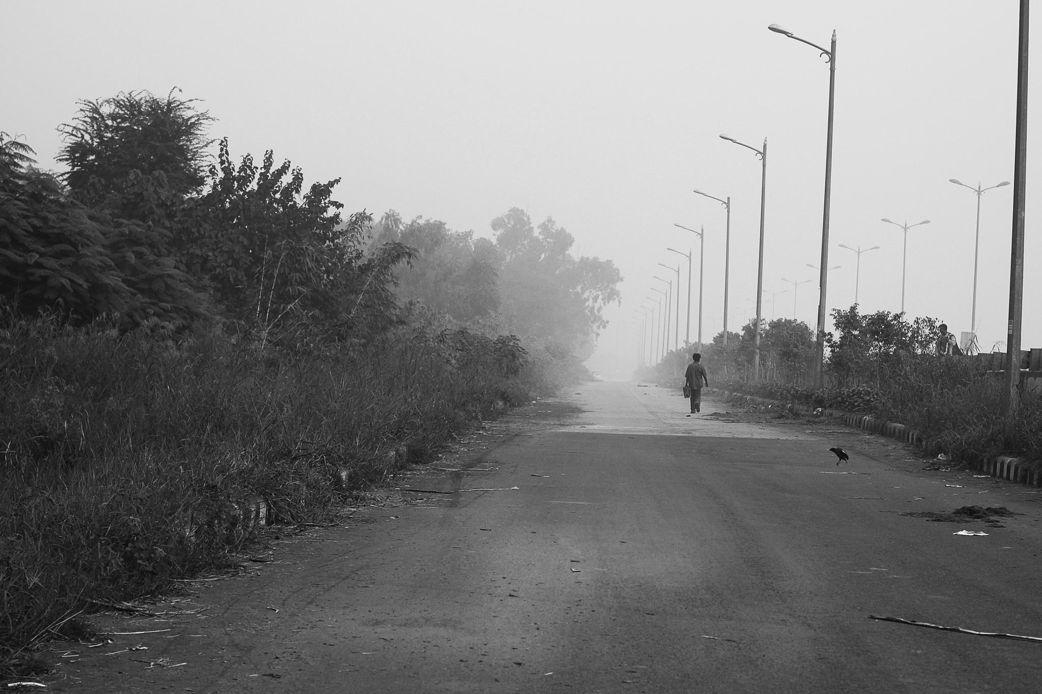 Delhi - India by am.lester