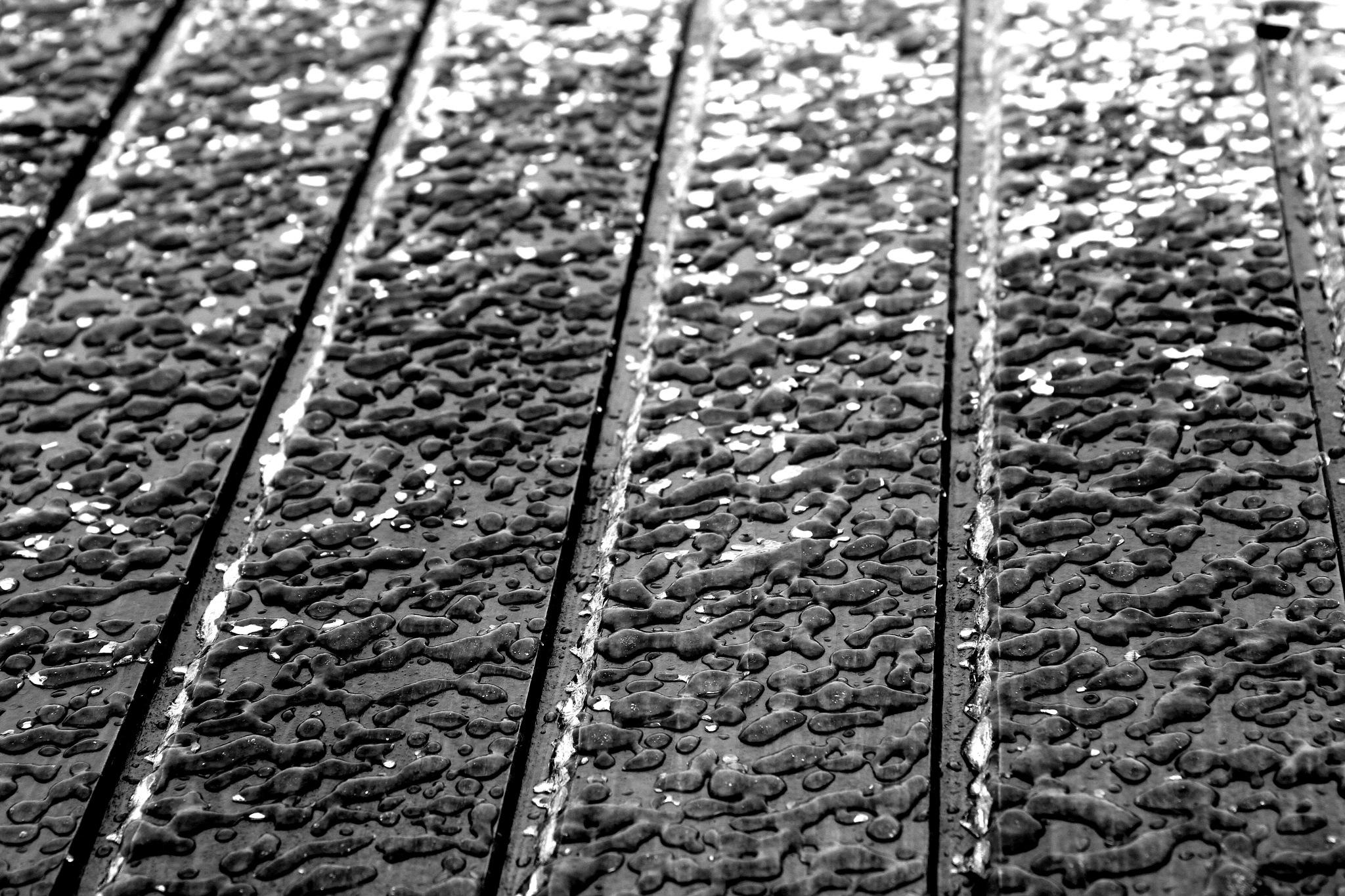 Freezing rain by Carol Androne
