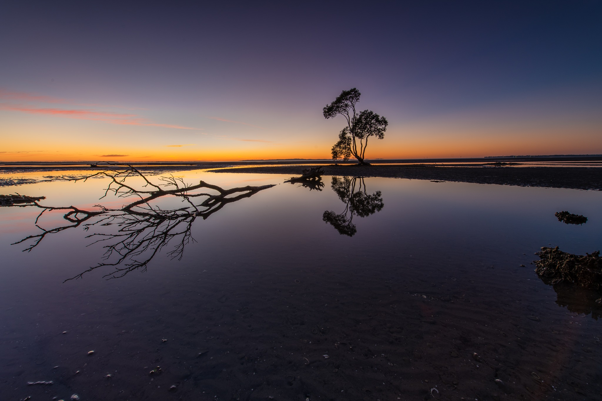Dawn Reflections by Sarah Tyler