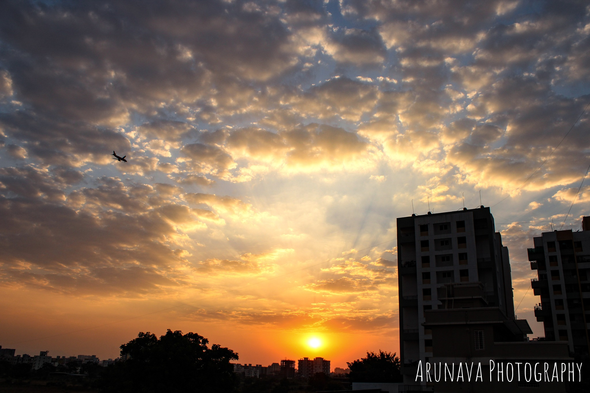 A beast on land but a mere pinch of salt in the sky by Arunava Mitra