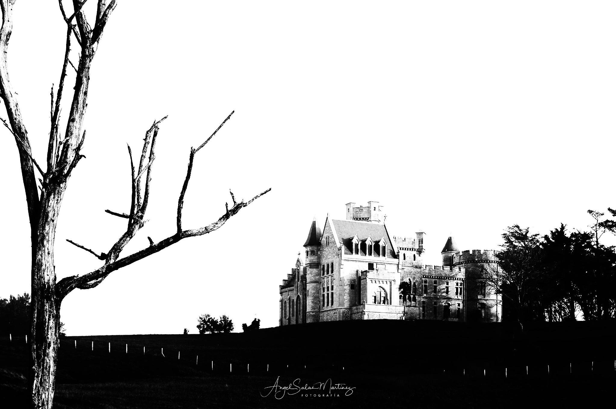 Castle by Ángel Salas Martínez