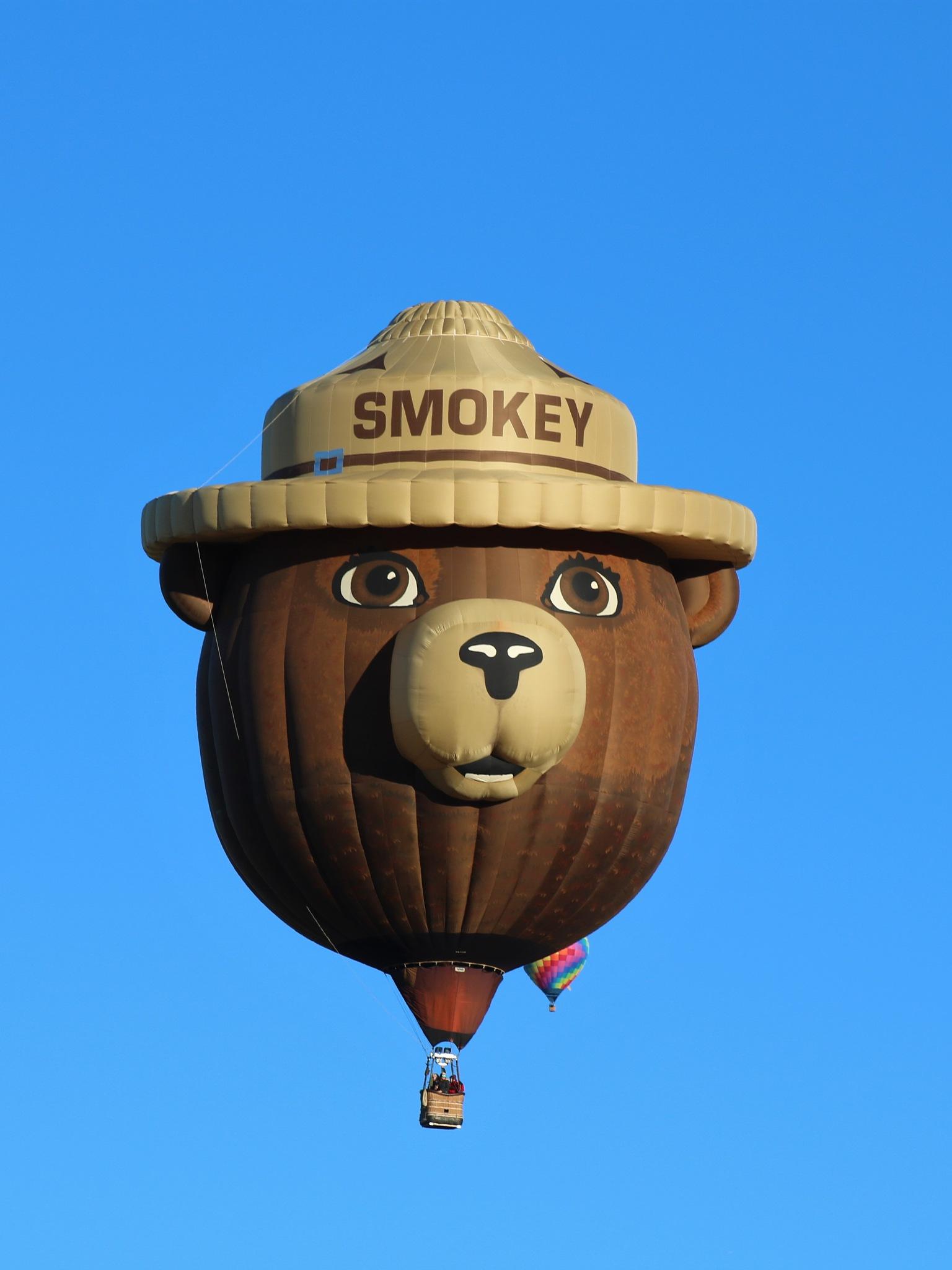 Smokey Bear Balloon by Carole Trees