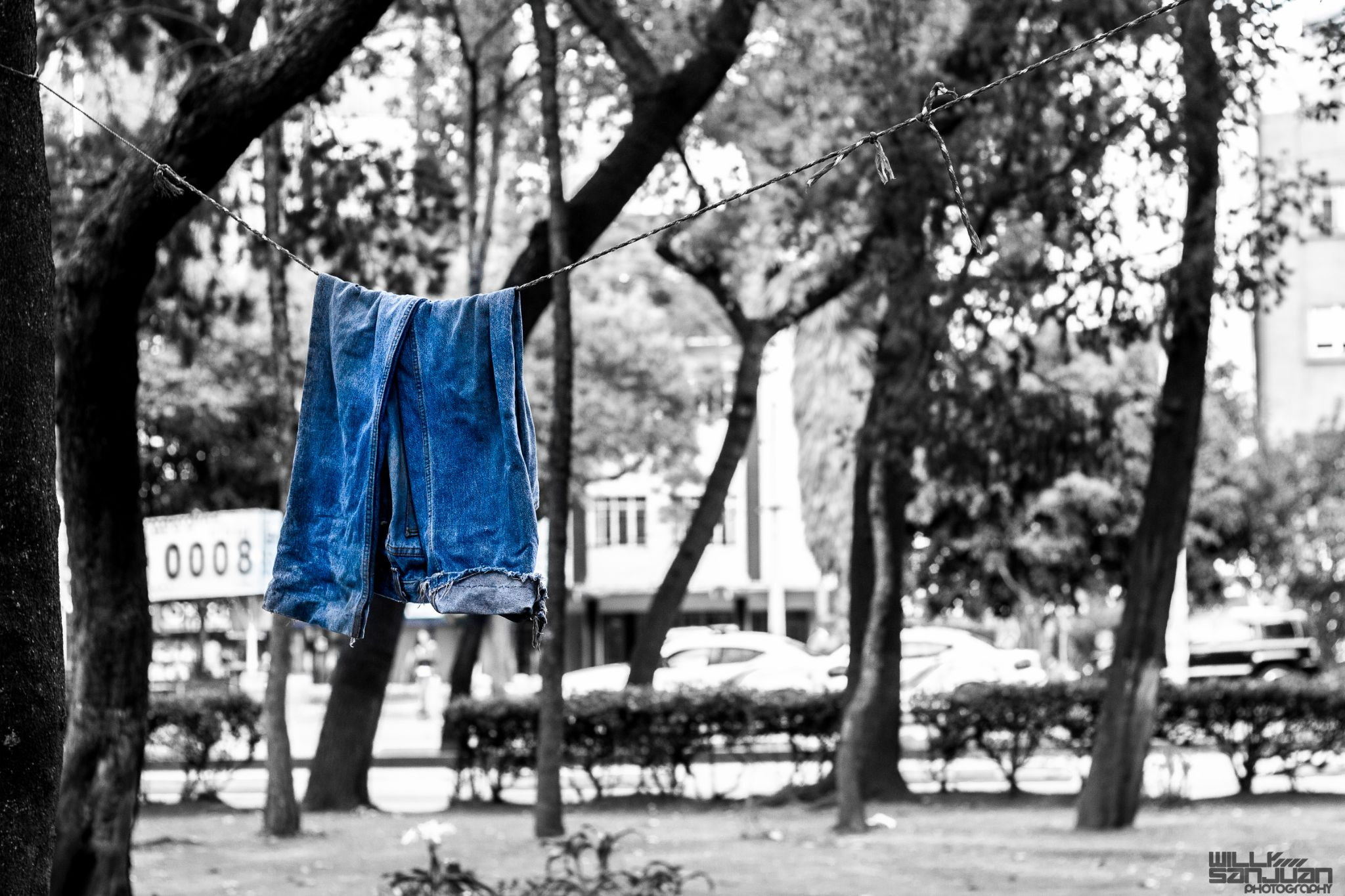 Homeless in Blue Jeans by Willy Sanjuan