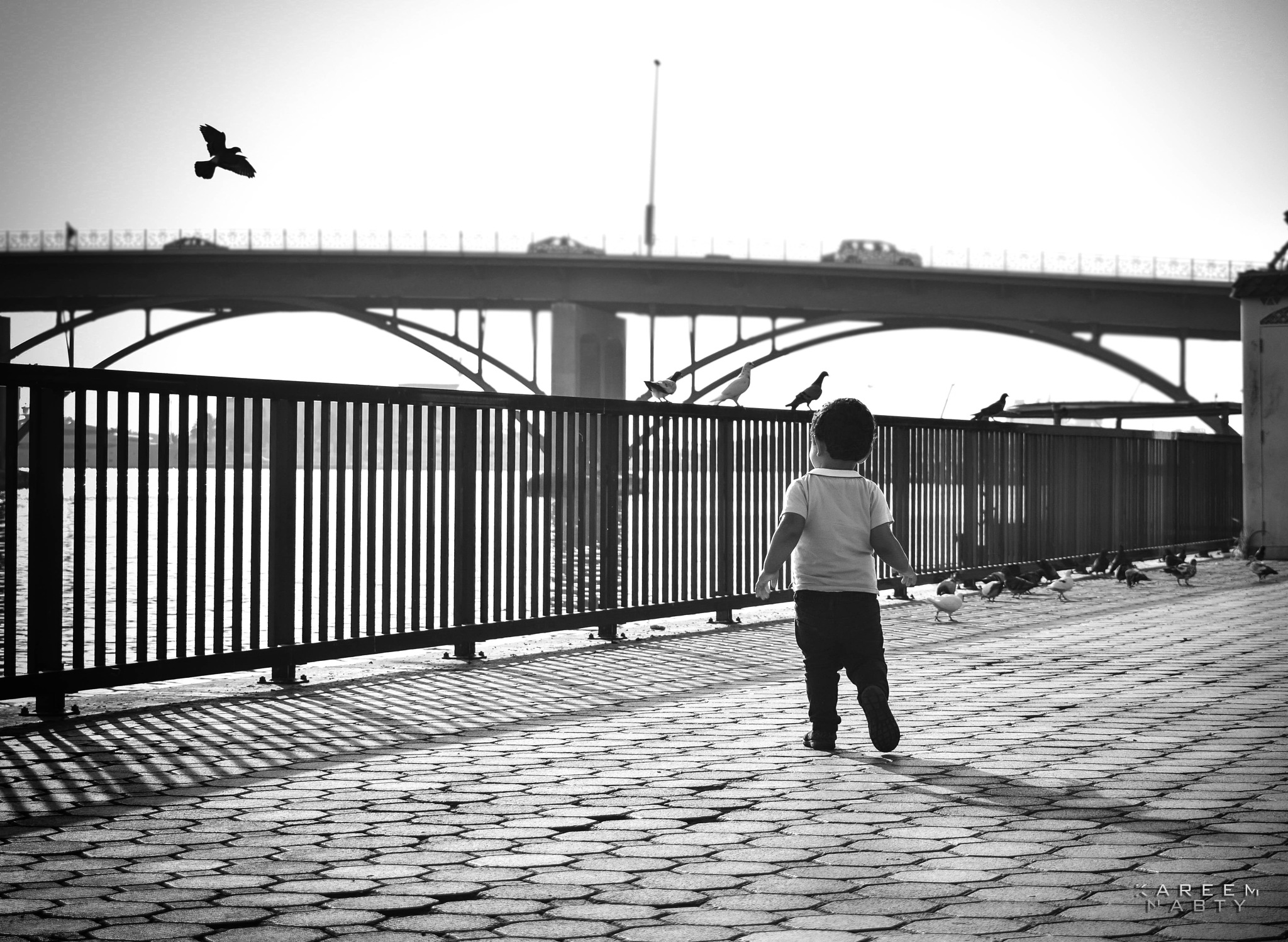 I want to fly .. by Kareem Nabty