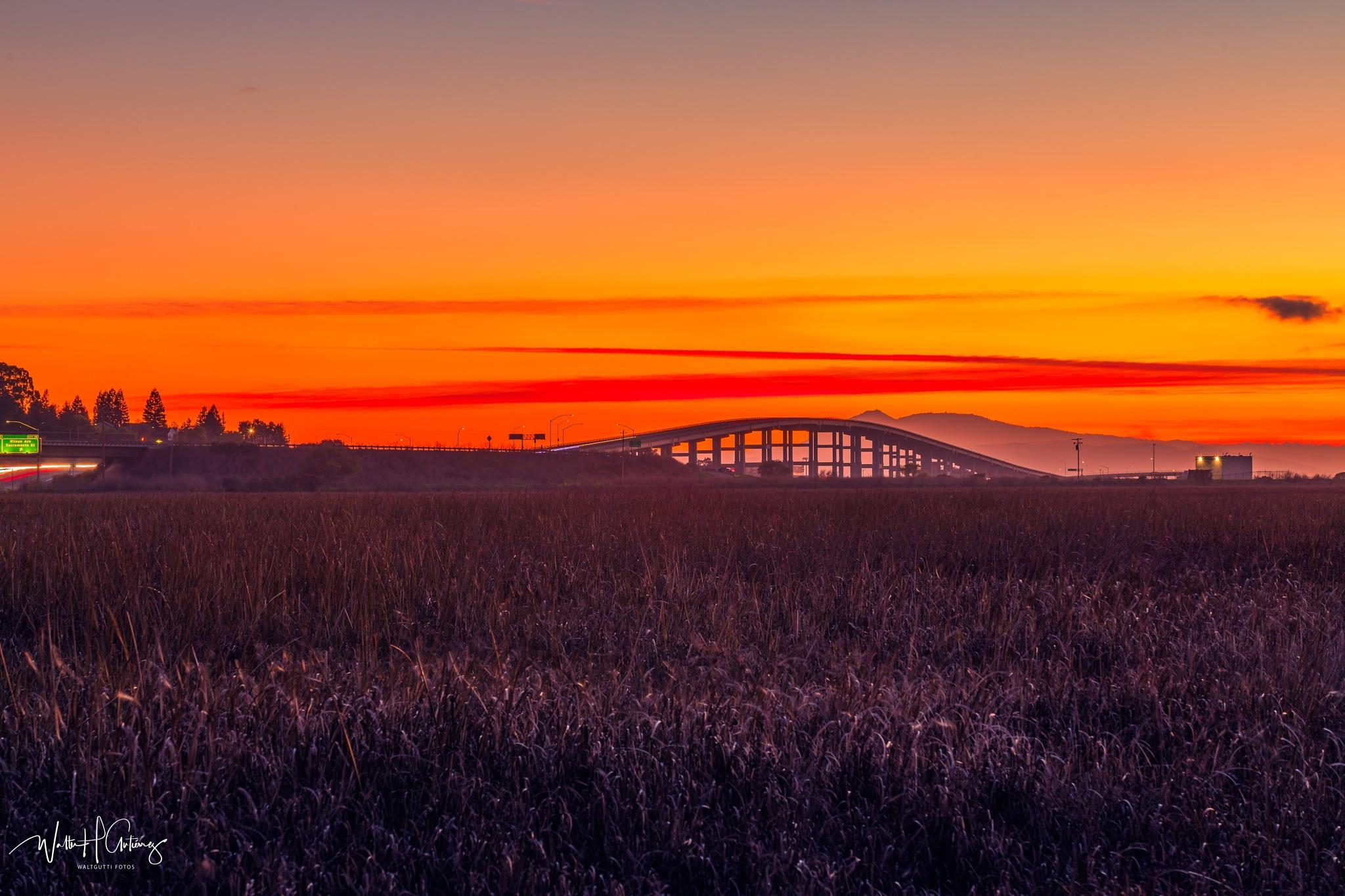 Photo in Landscape #sunset #napa river bridge #bridge #bridges #vallejo #ca #california #bay area #monsters at the end of the hig #monsters #landscape #longexposure #lifestyle #orange #cars #trees #nature #picoftheday