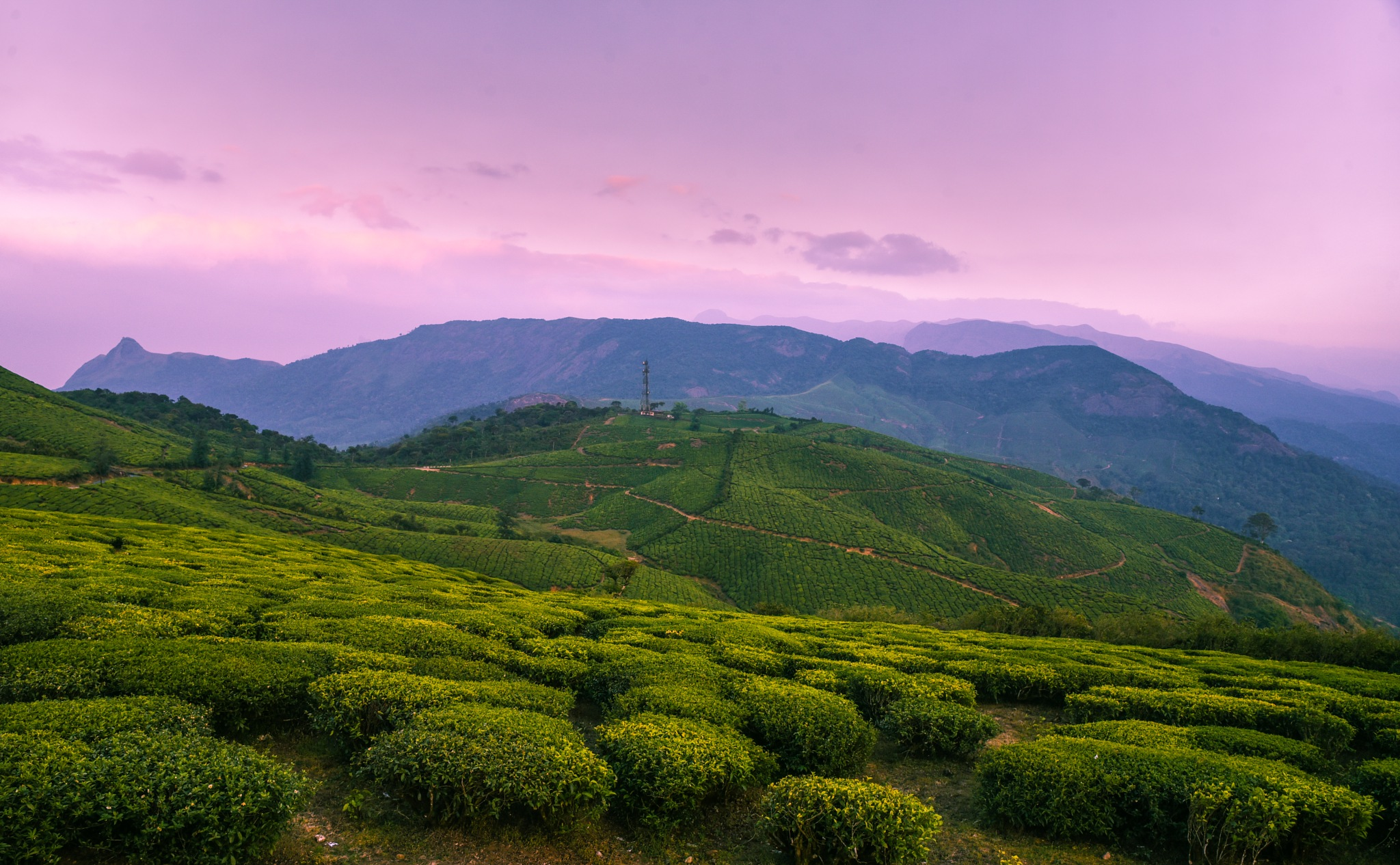 Valparai - In Love with this place !! by Prathap Gangireddy