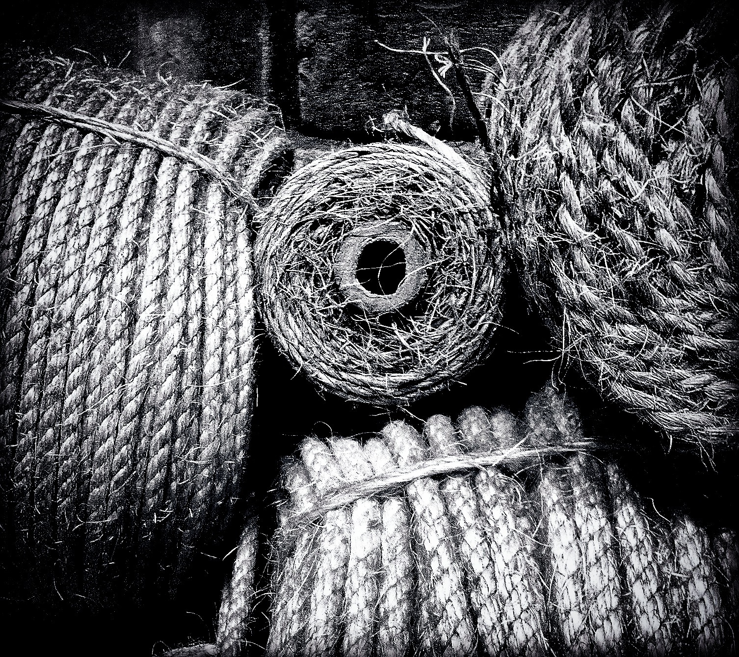 Rope by Images by Dave