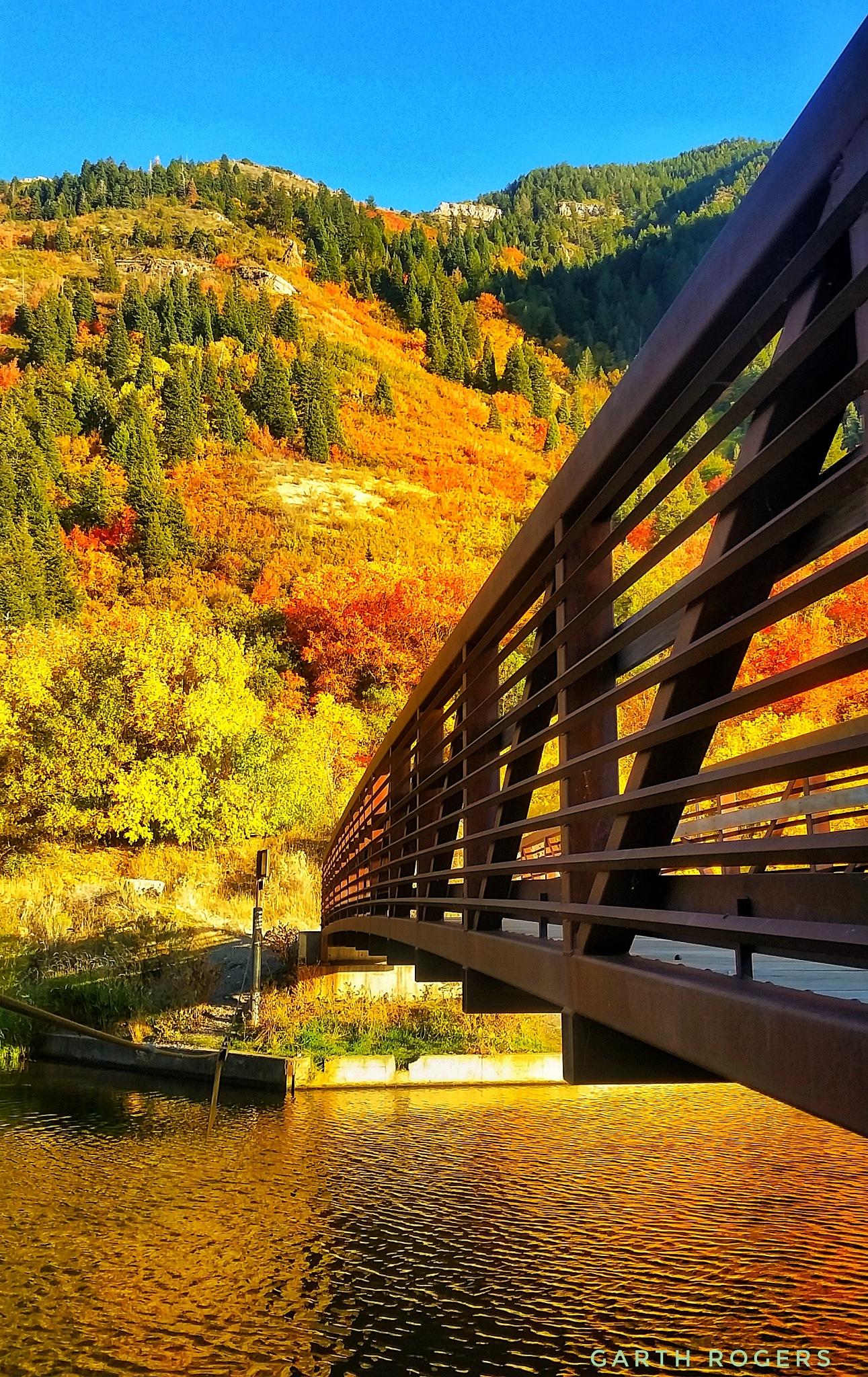Autumn Bridge by Garth Rogers