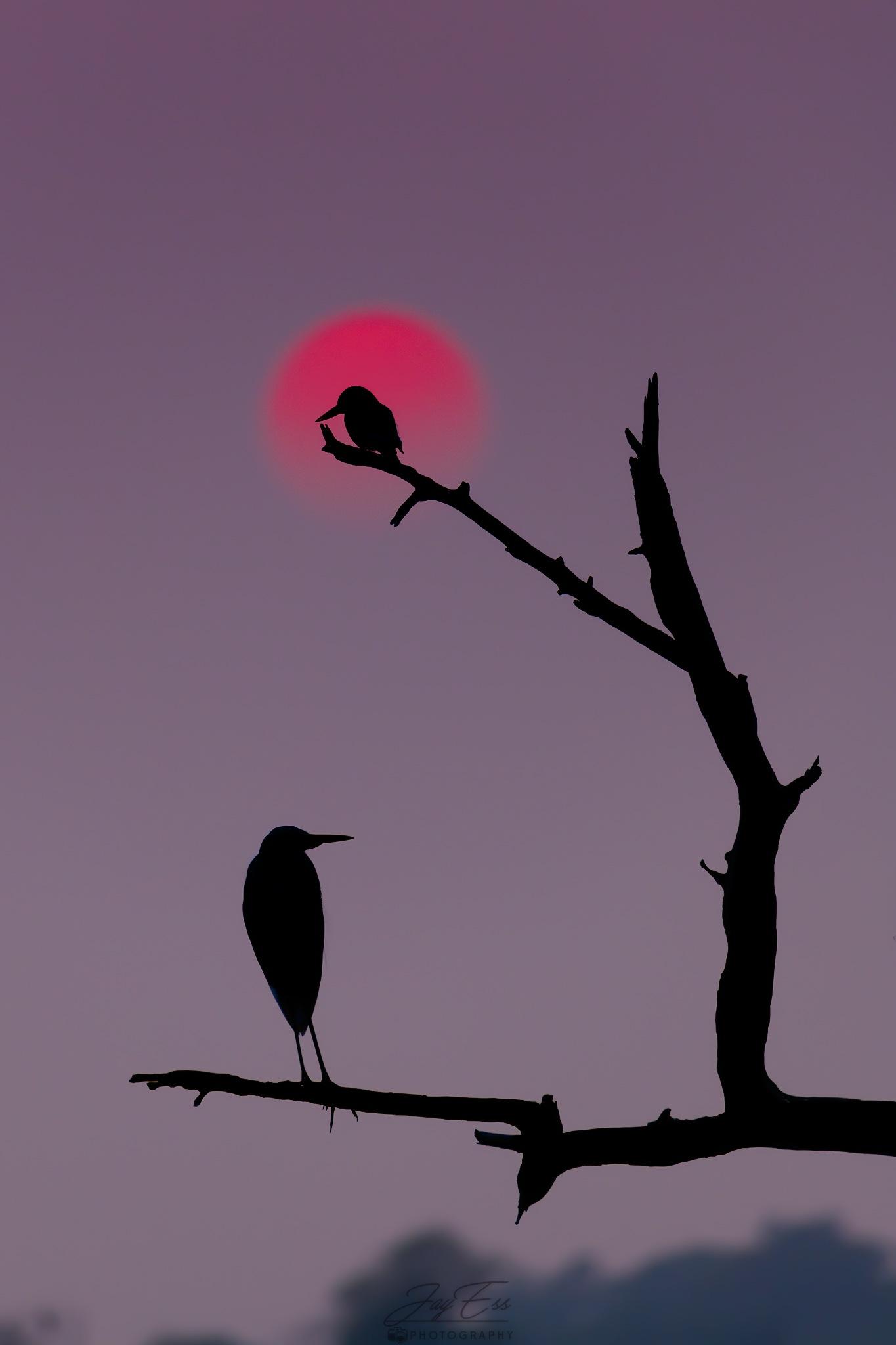 sunset by jeetendra