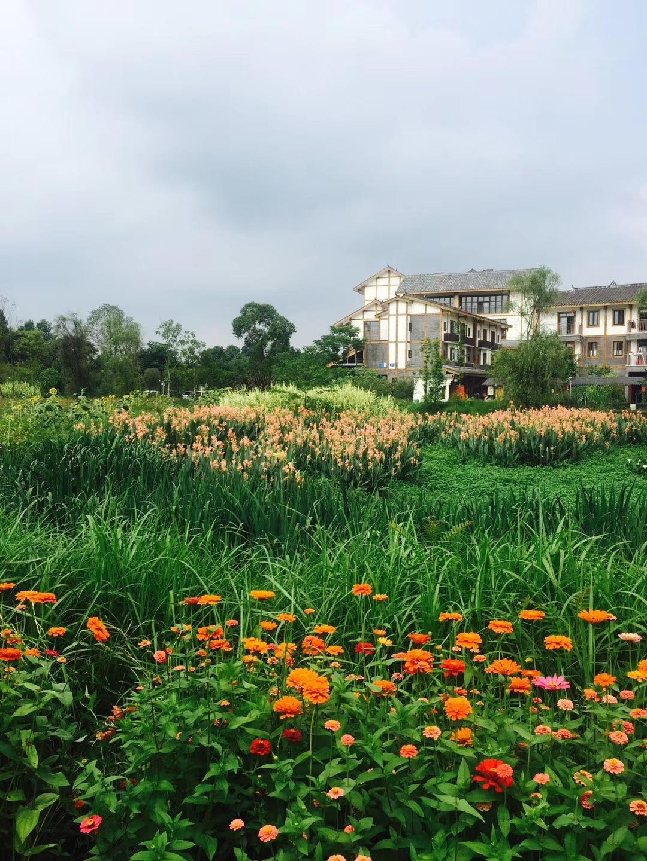 Garden view by Vivek