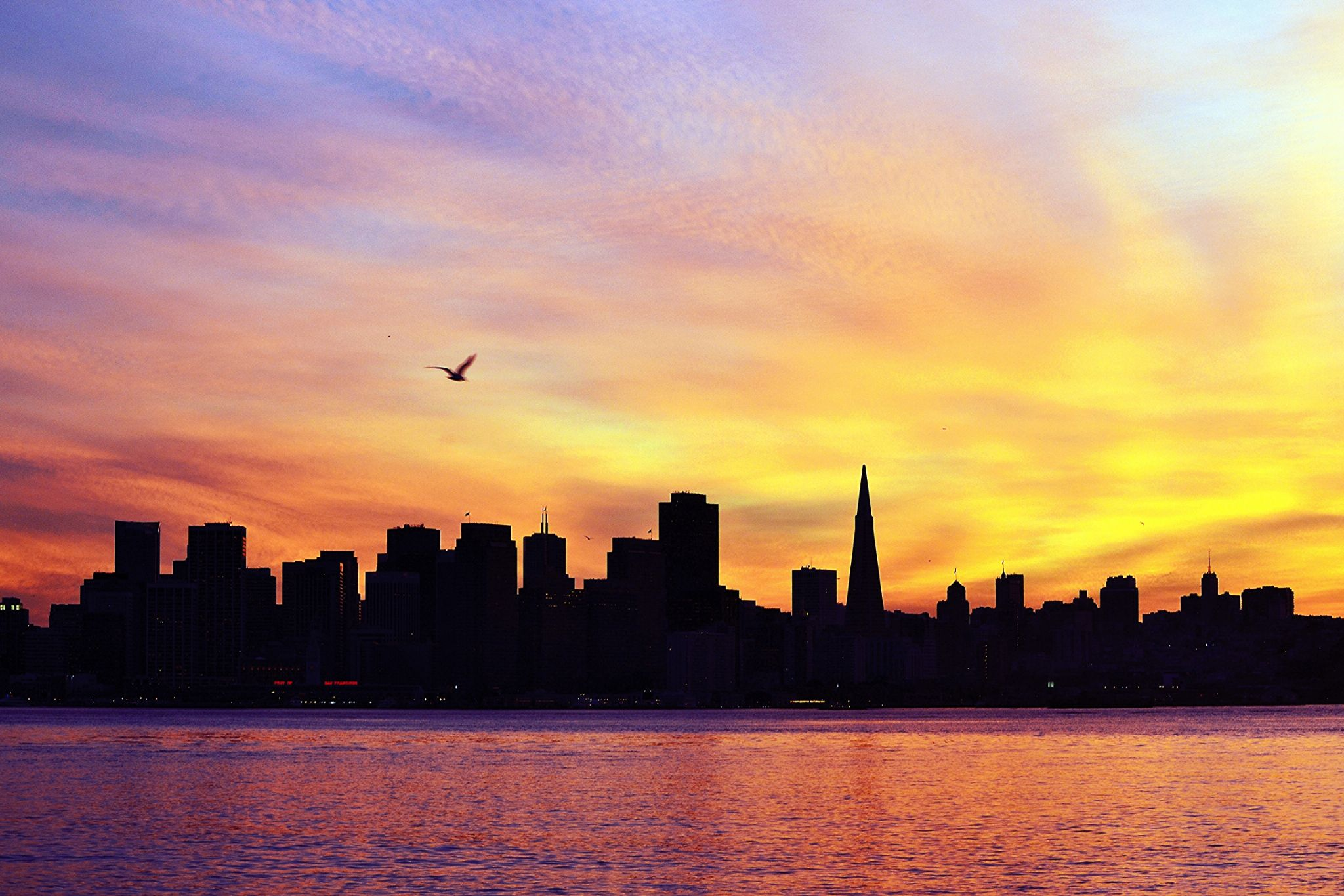 San Francisco at Sunset by Frederico Domondon