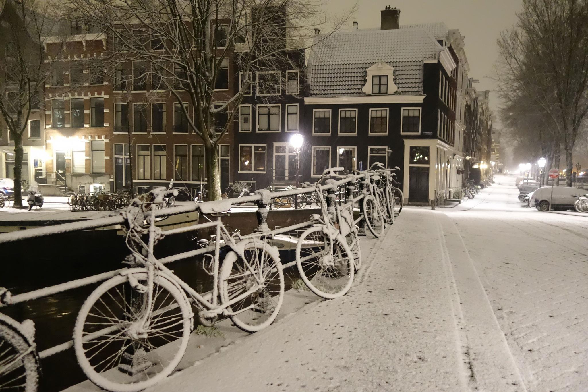 Photo in Random #amsterdam snowfall