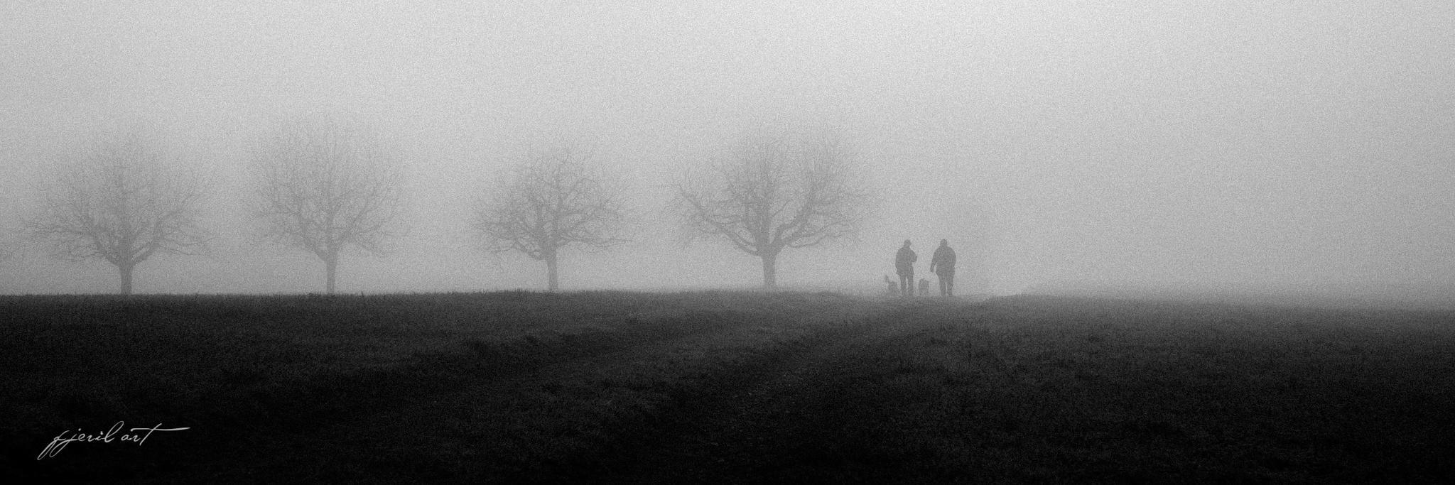 foggy morning II by Matthias Gaberthüel