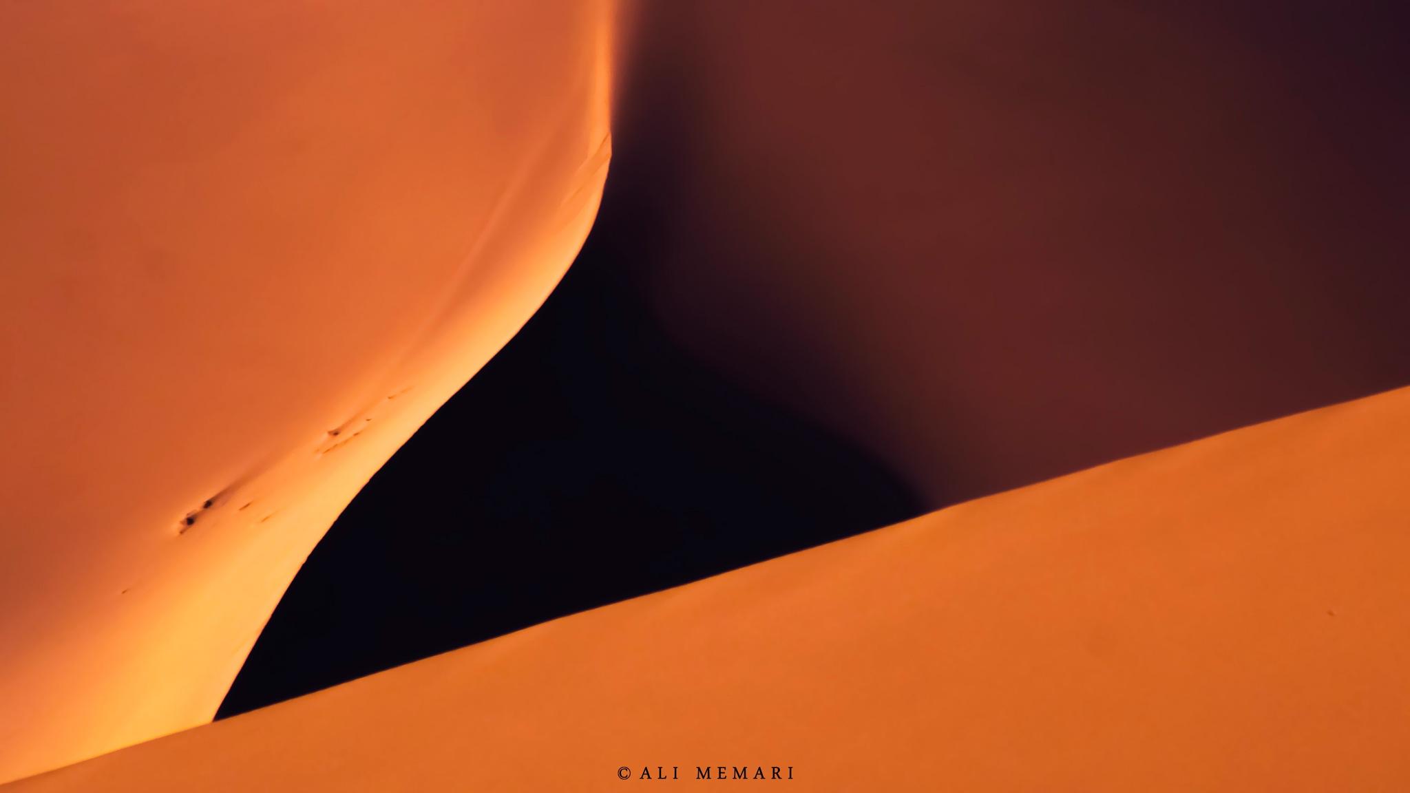 Untitled by Ali Memari