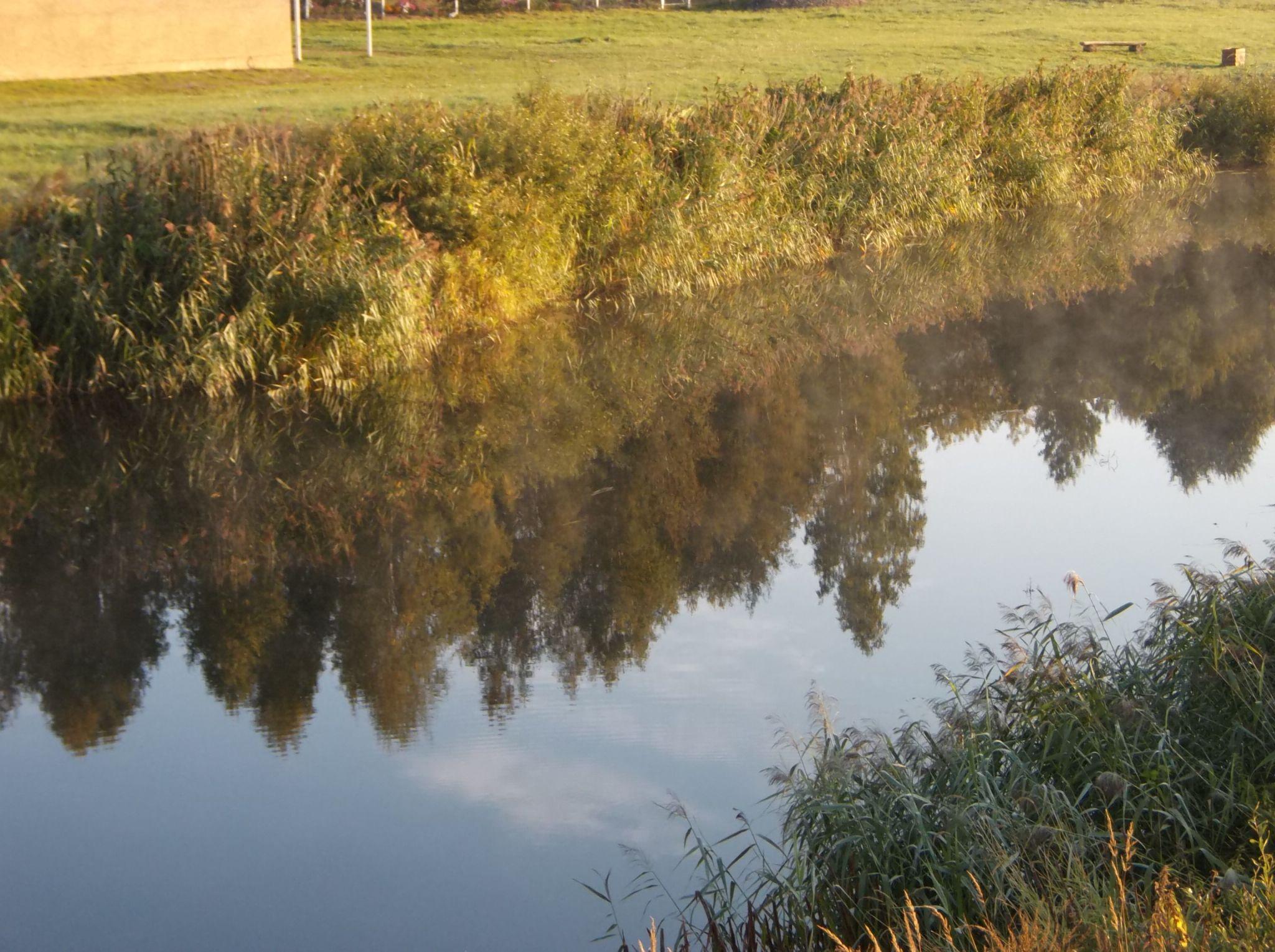 SReflections on the river. by Zita Užkuraitienė