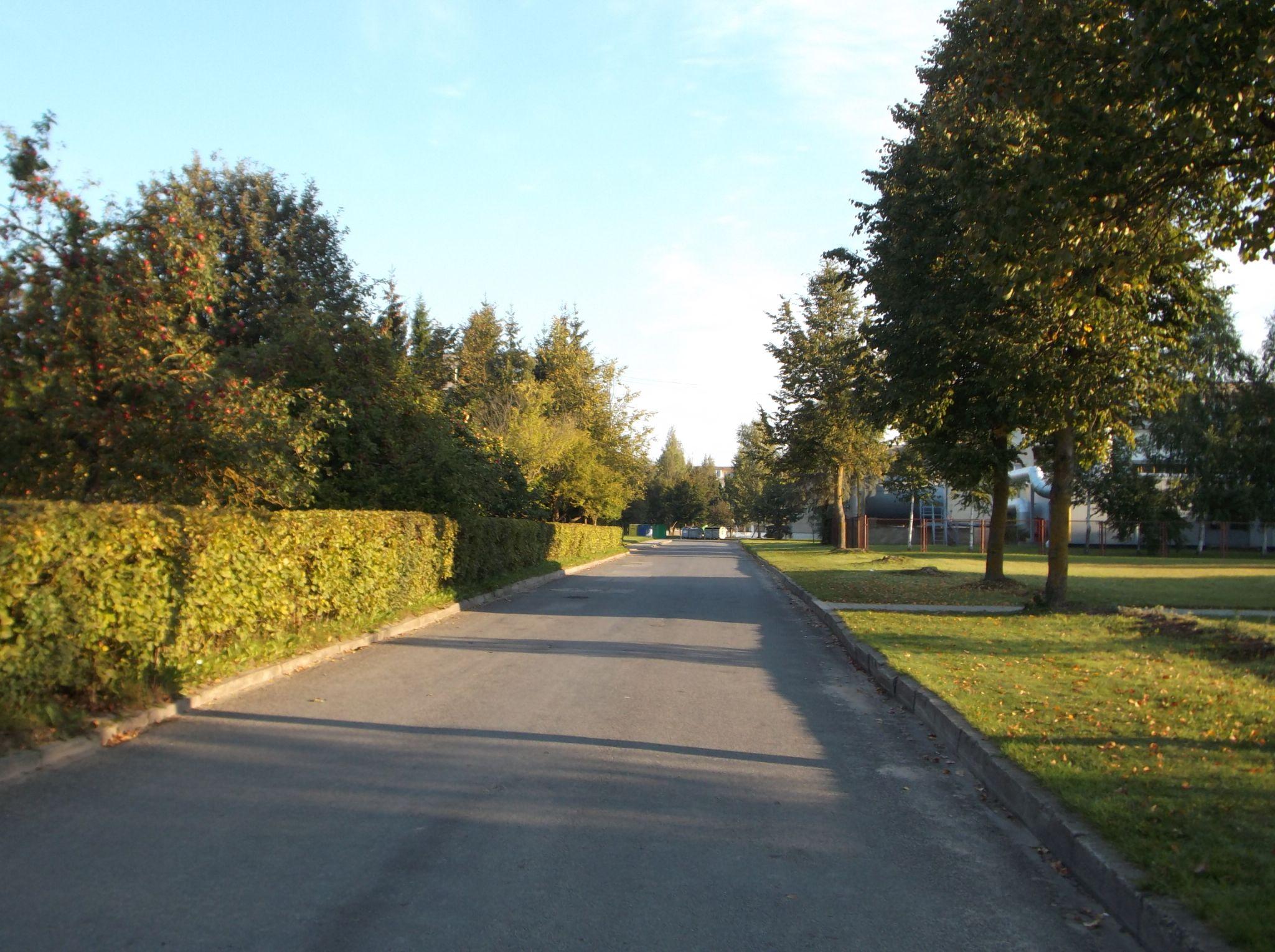 Town street. by Zita Užkuraitienė
