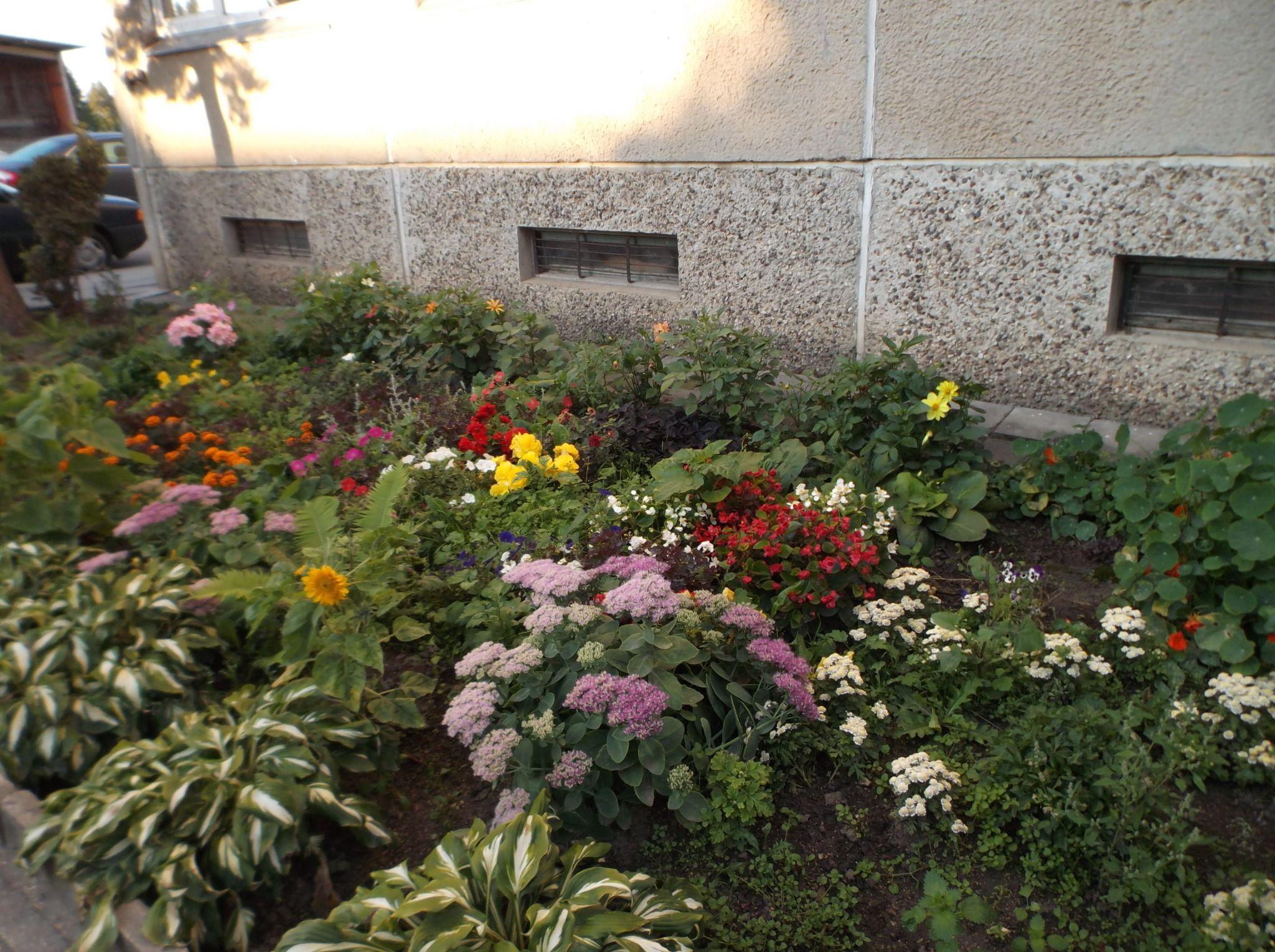Flower Garden. by Zita Užkuraitienė