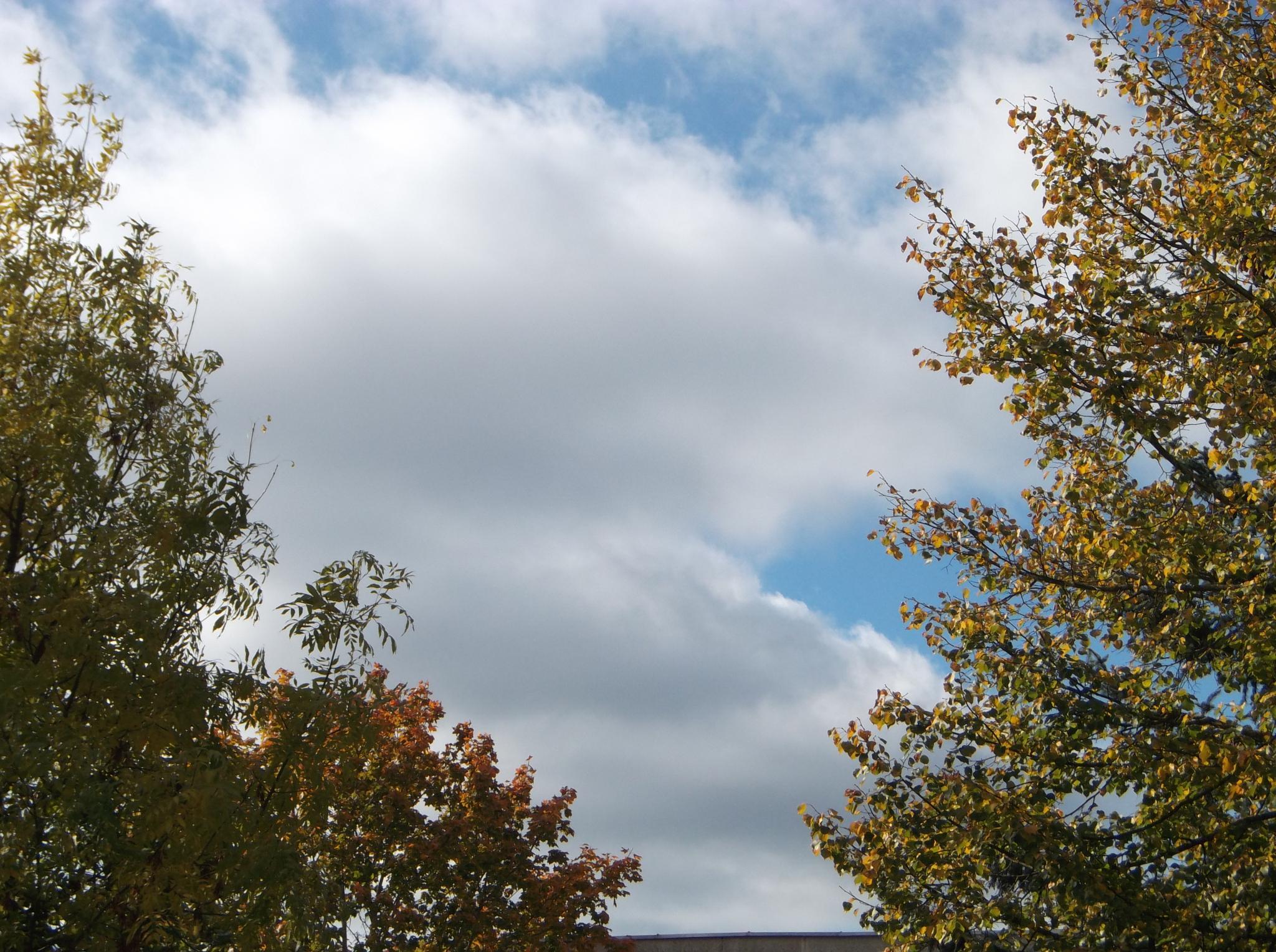 Autumn clouds. by Zita Užkuraitienė