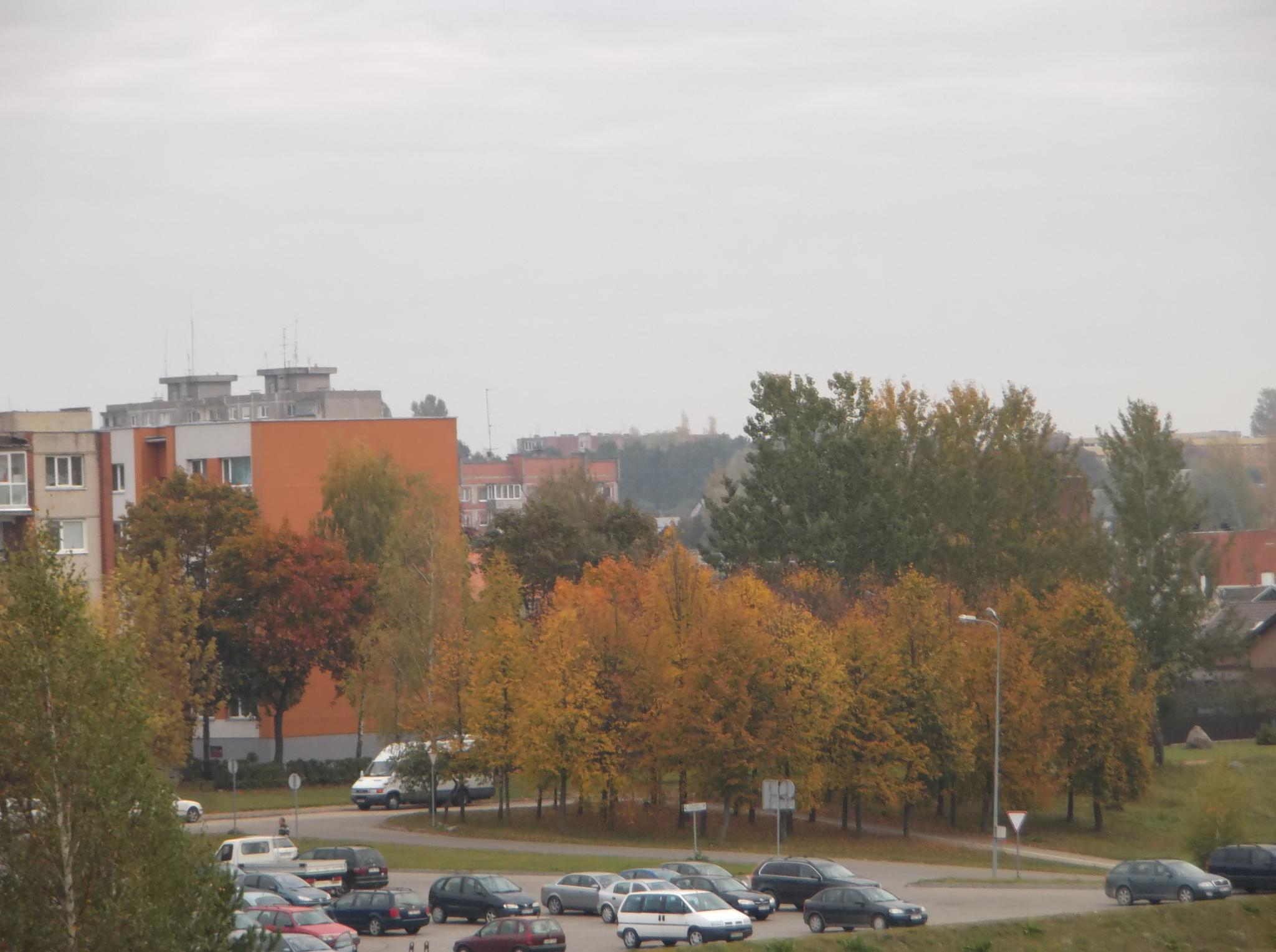Autumn in the city. by Zita Užkuraitienė