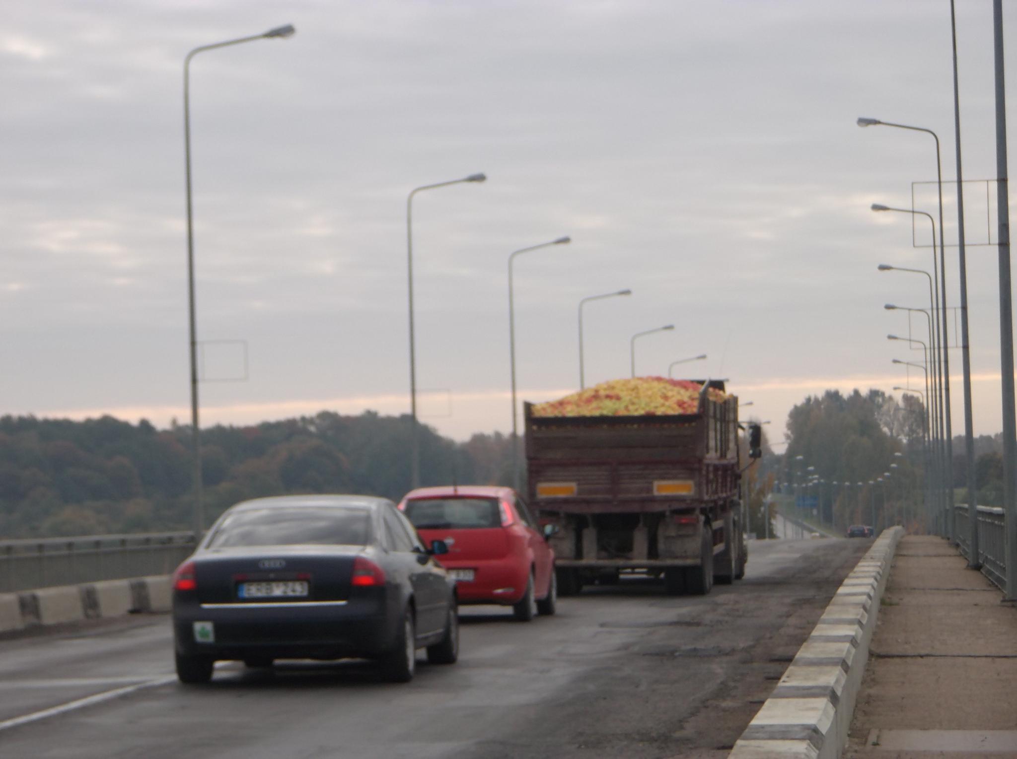 On the bridge by Zita Užkuraitienė