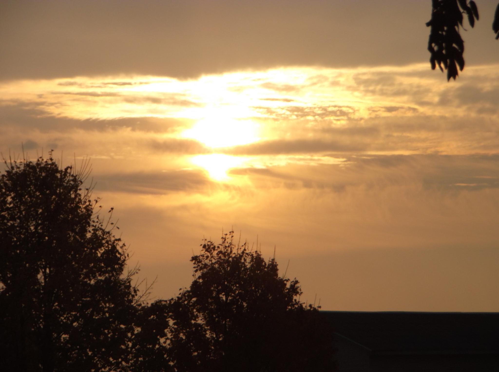 Sunset. by Zita Užkuraitienė