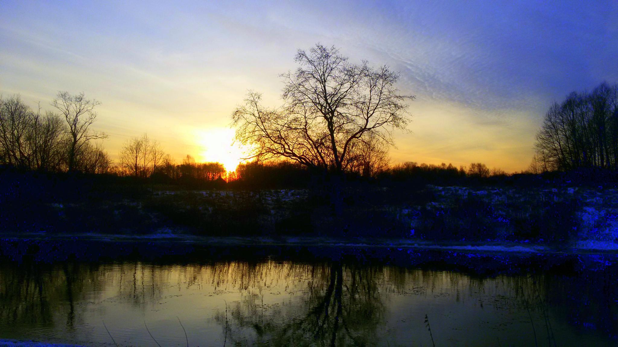Morning. by Zita Užkuraitienė