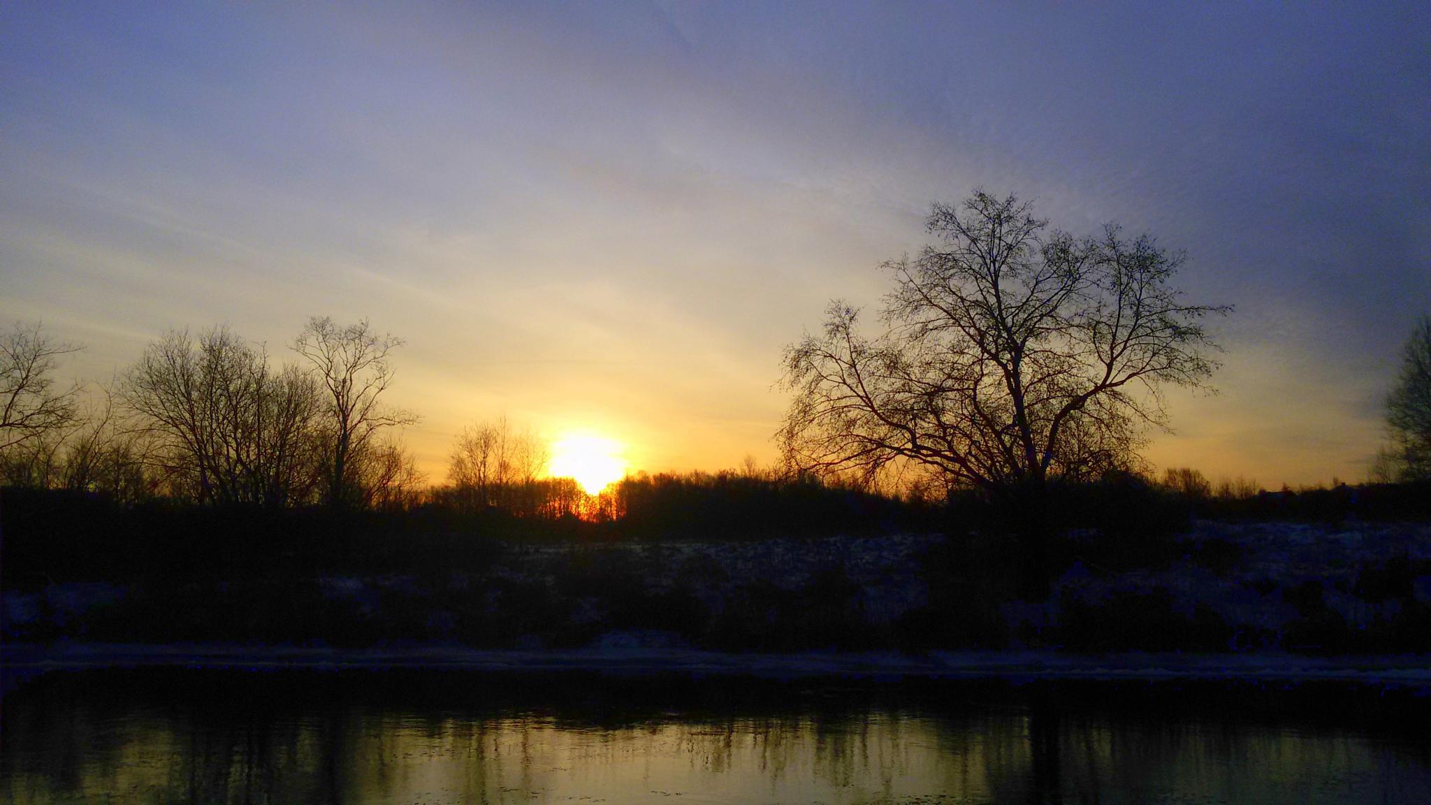 Winter sunrise by Zita Užkuraitienė
