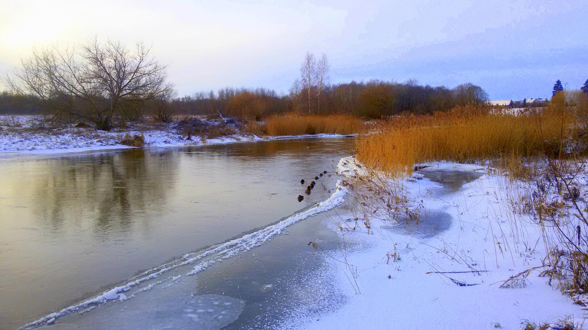 Winter on the River by Zita Užkuraitienė