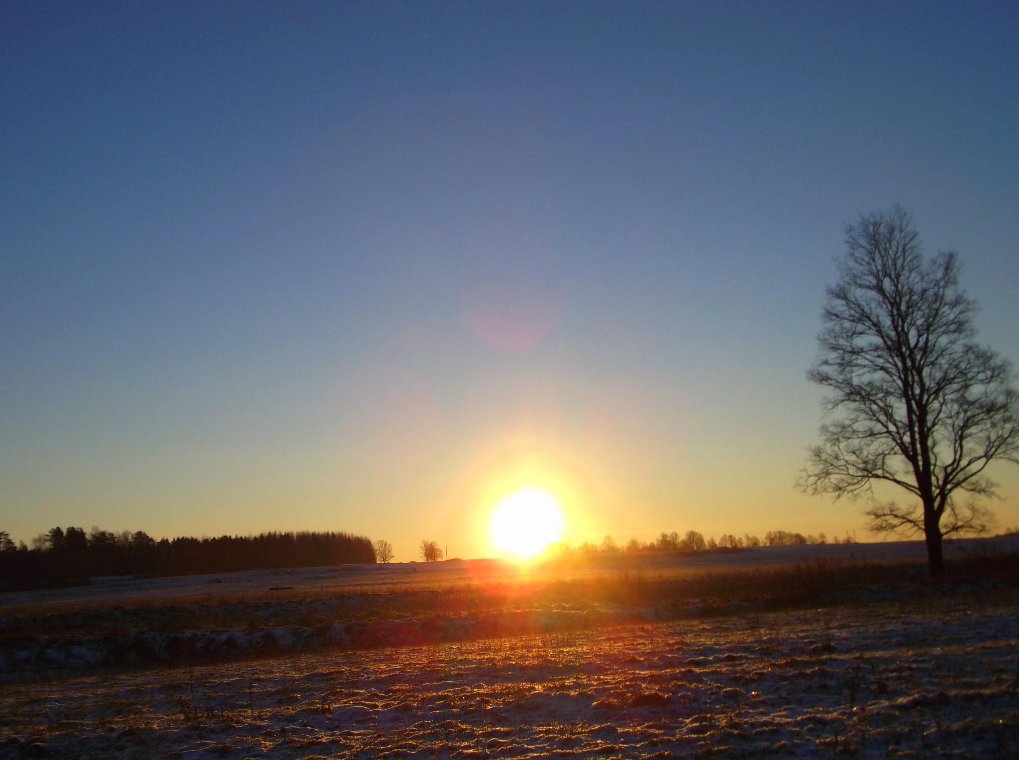Sunrise by Zita Užkuraitienė