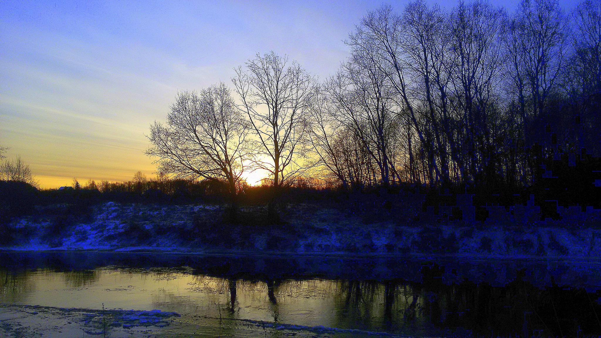 Winter morning by Zita Užkuraitienė