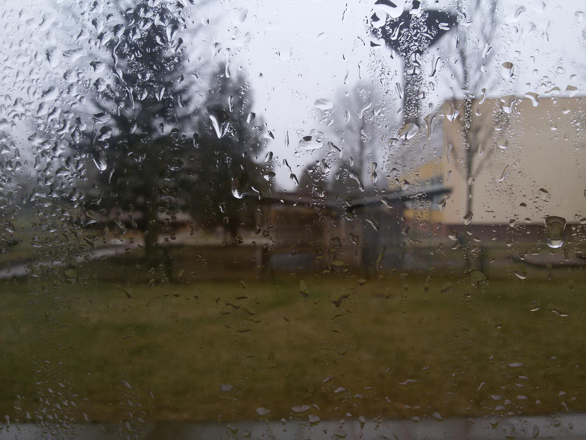 Rains by Zita Užkuraitienė