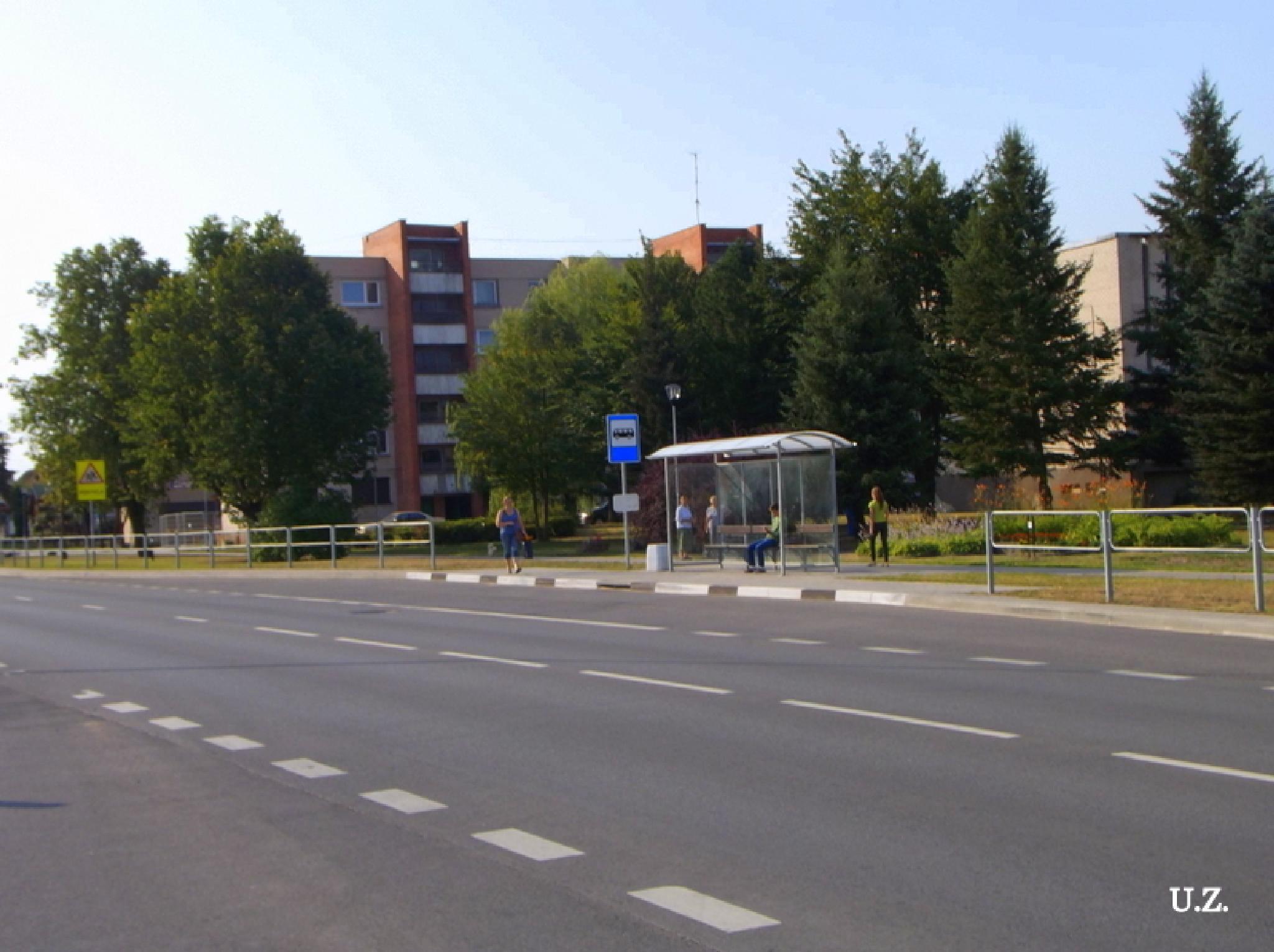 Street by Zita Užkuraitienė