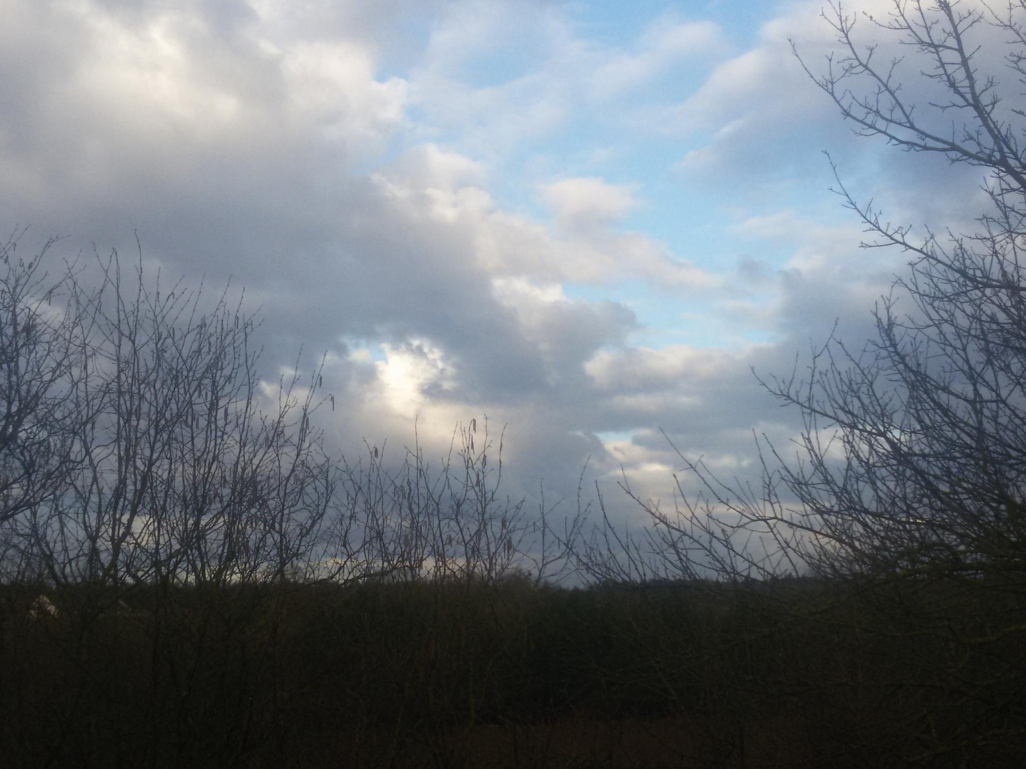 Morning sky by Zita Užkuraitienė