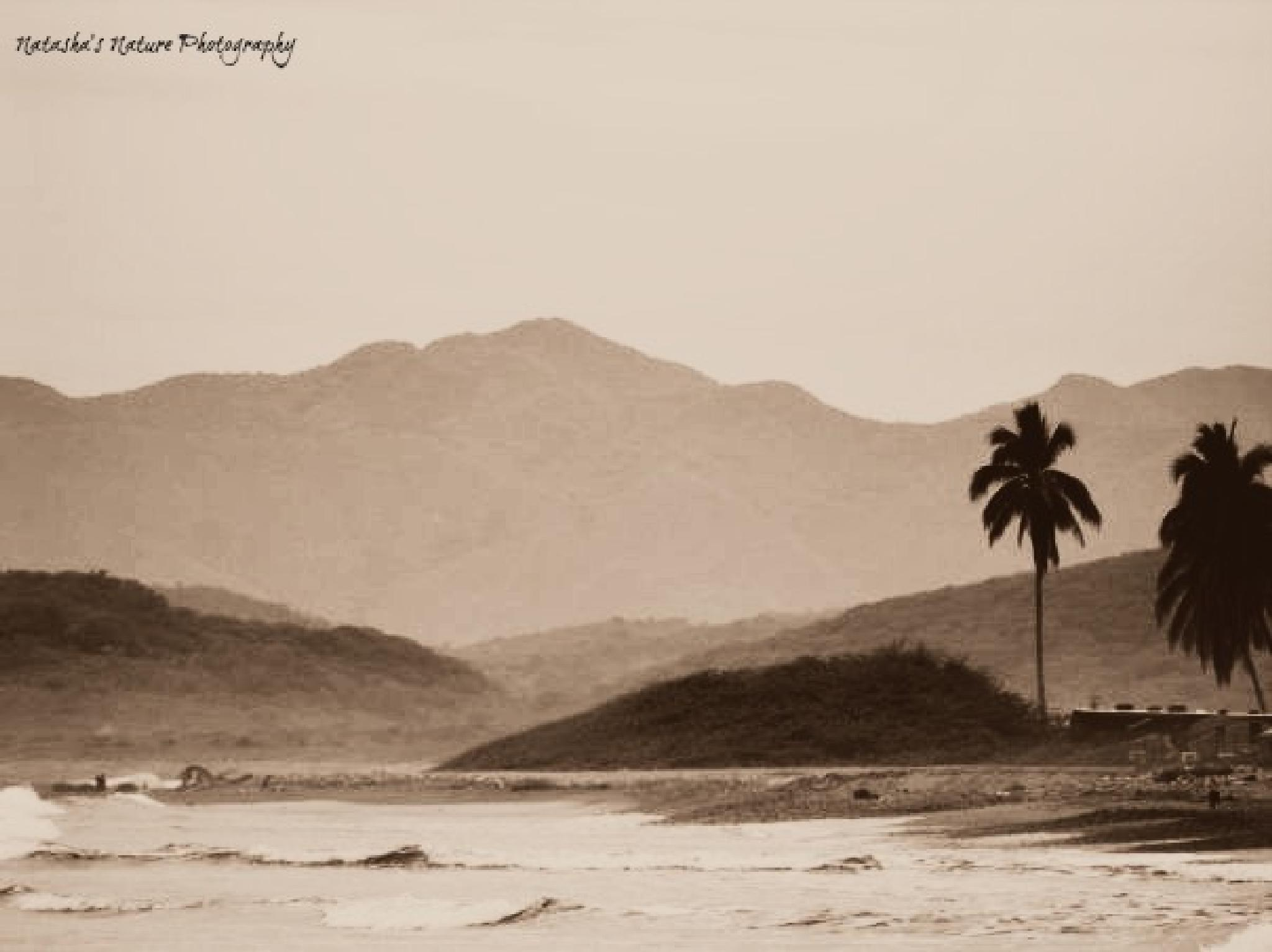 After the Tsunami by Natasha Litia