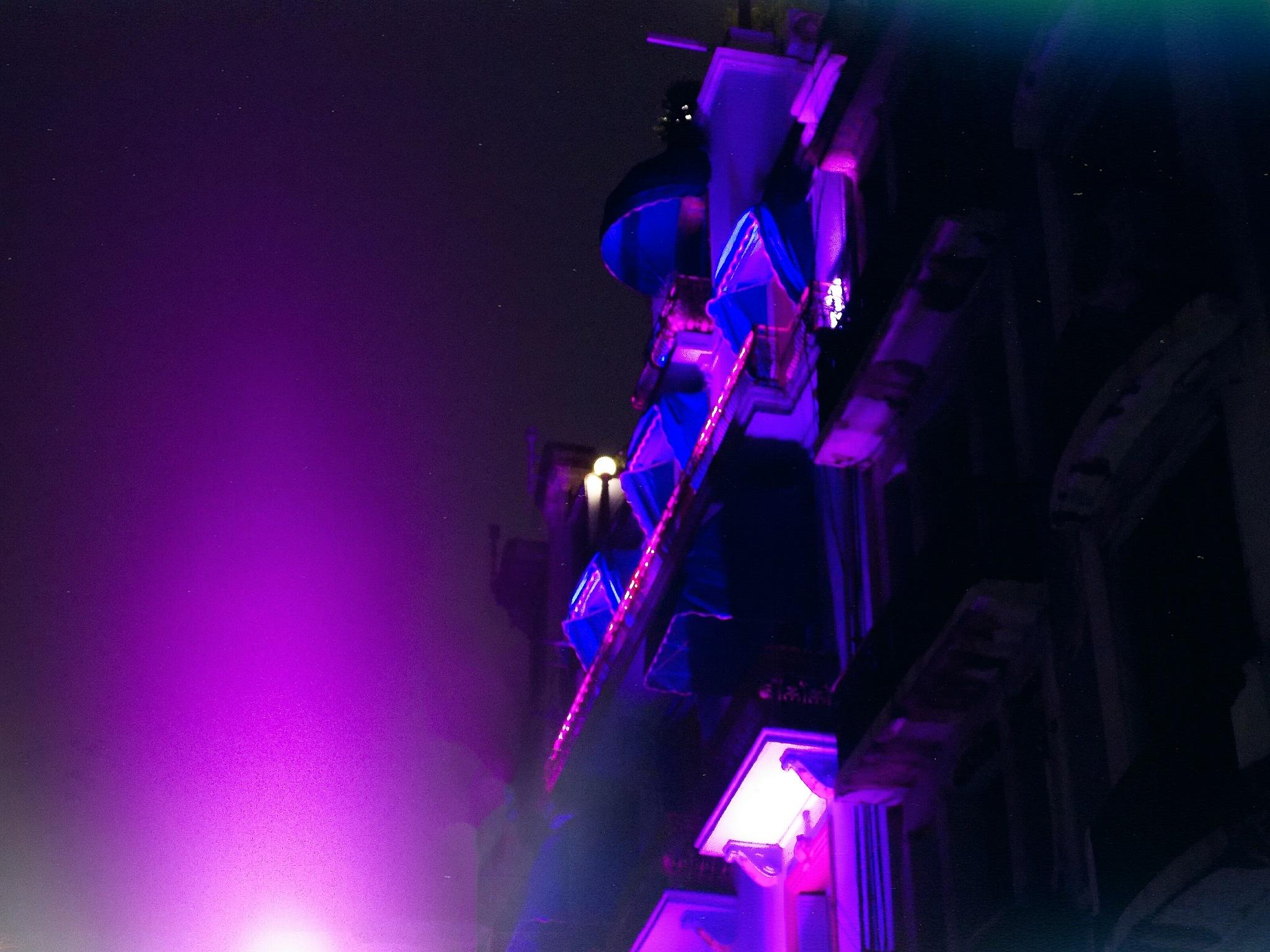 """Purple Castle"" by Paola A. Toledo"