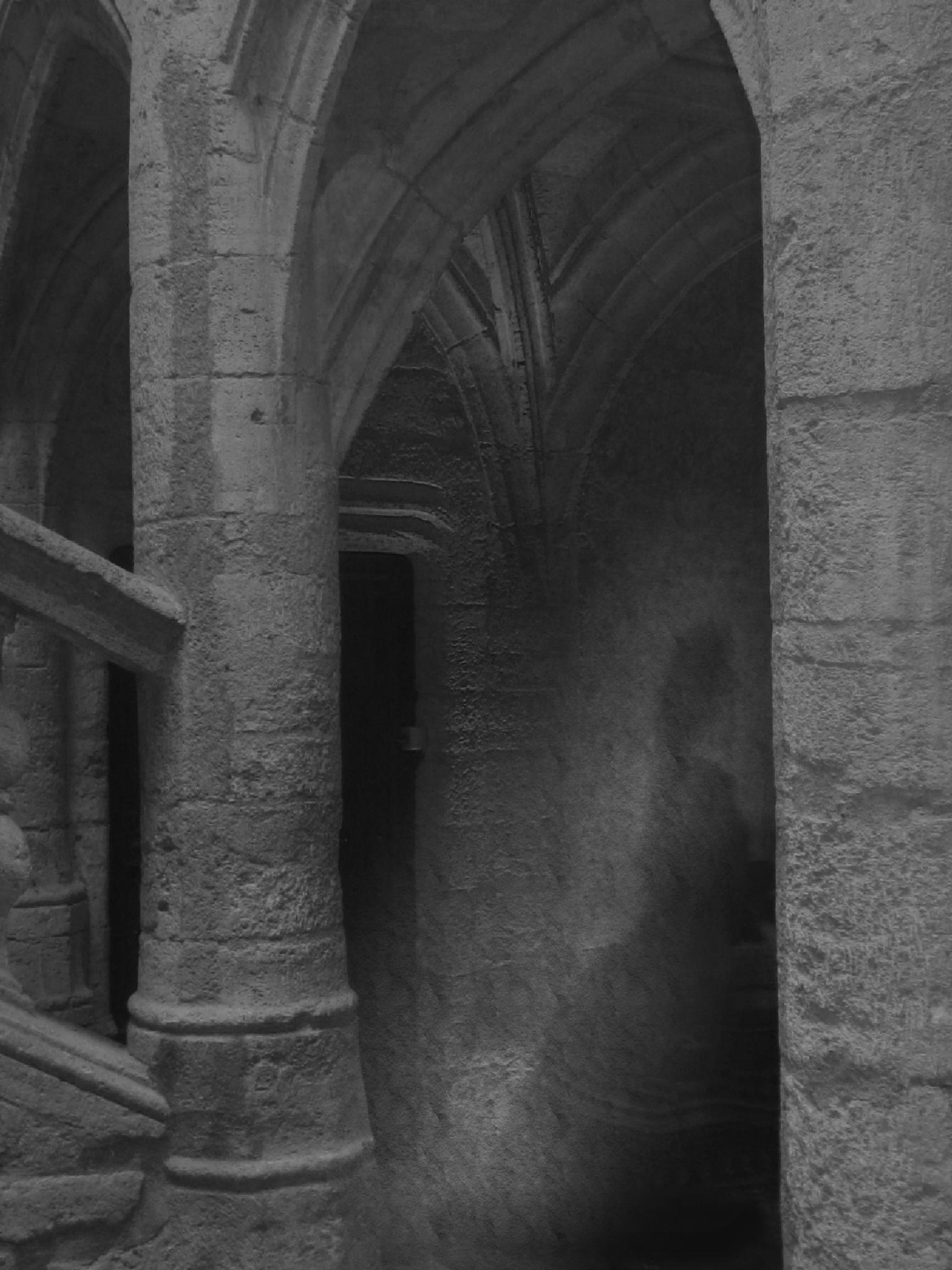 Photo in Black and White #ghostly #ghost #halloween #black and white #medieval #vaults