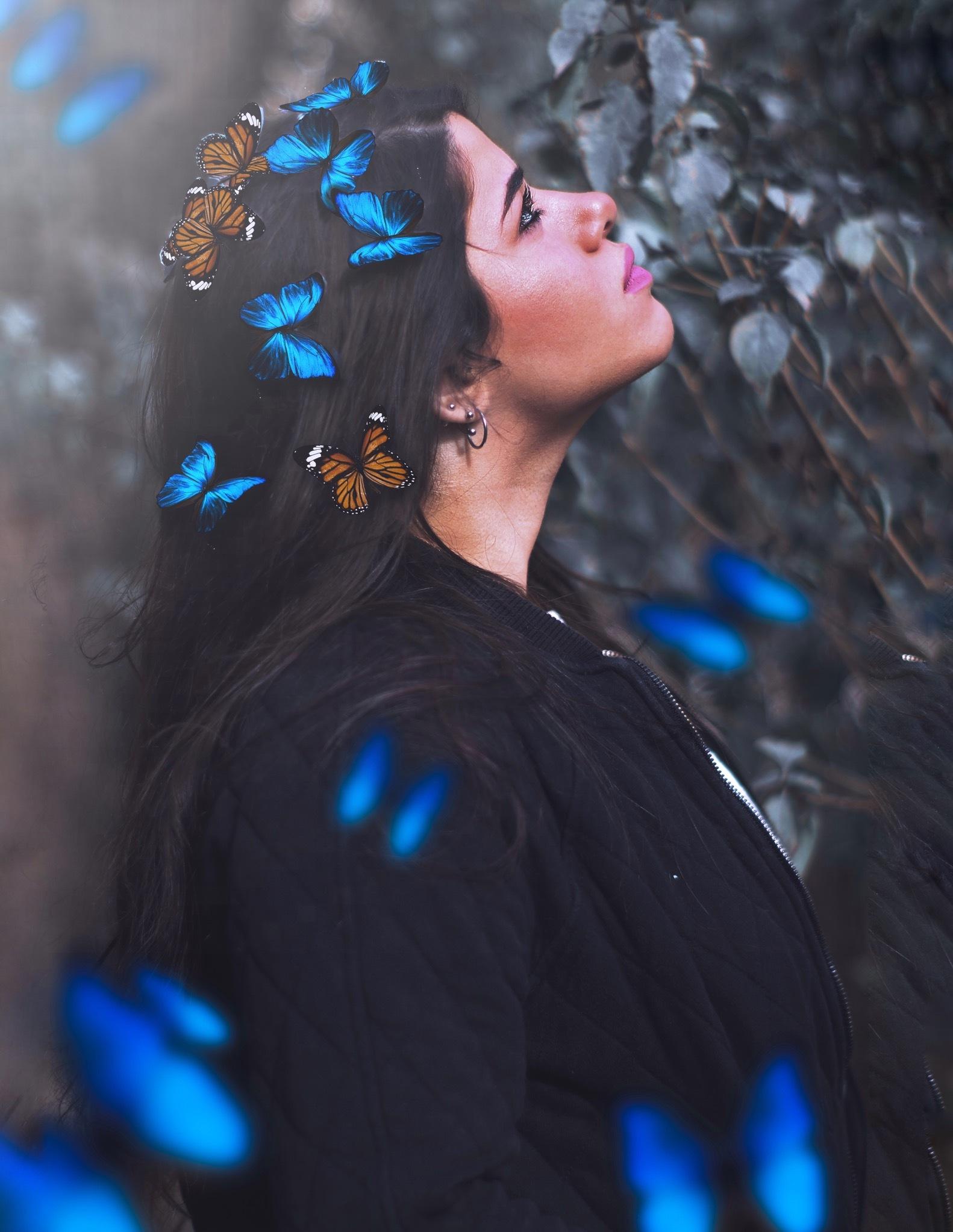 Butterflies by Dina Tarek