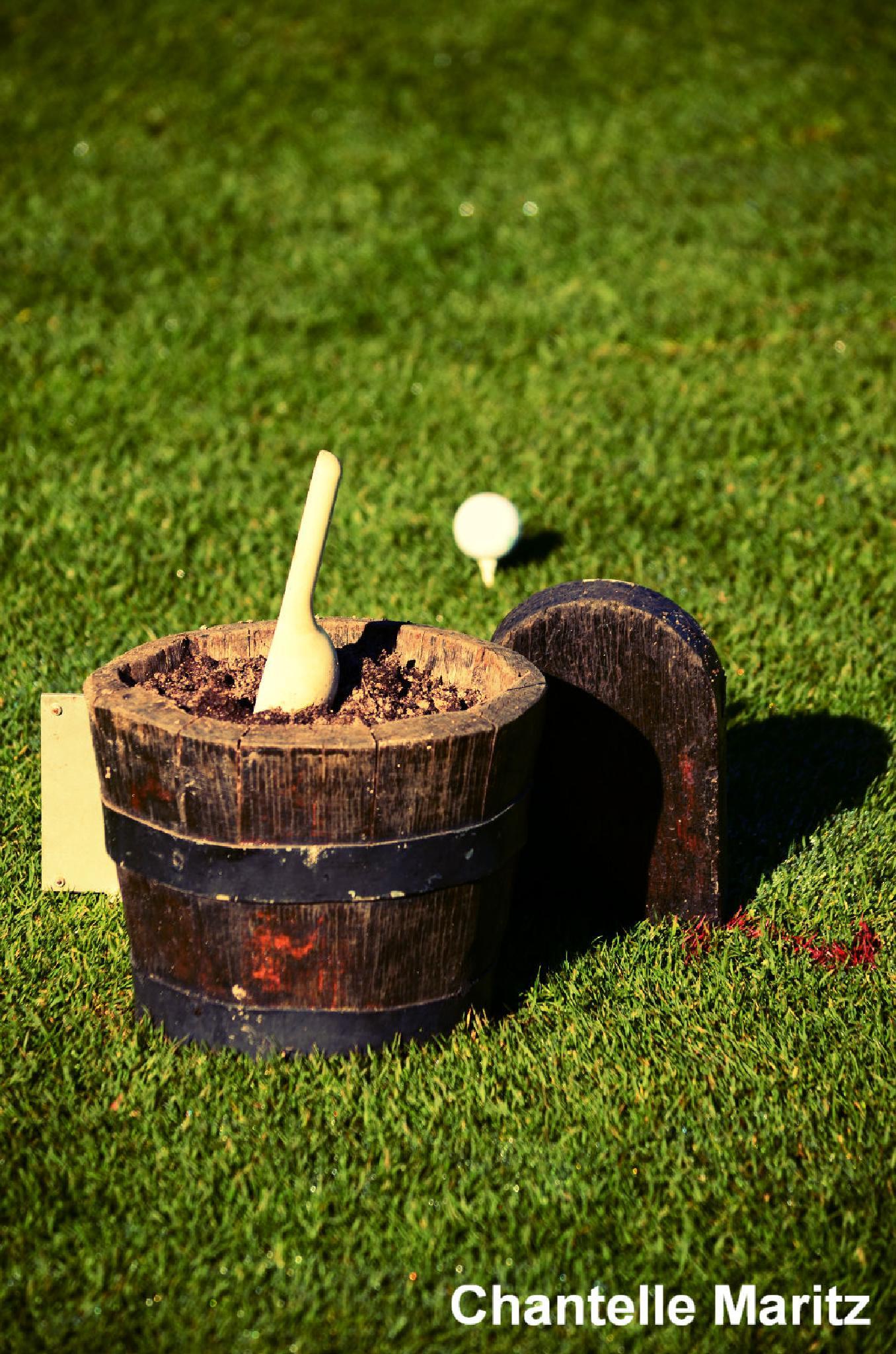 The dirt bucket. by Chantelle Maritz