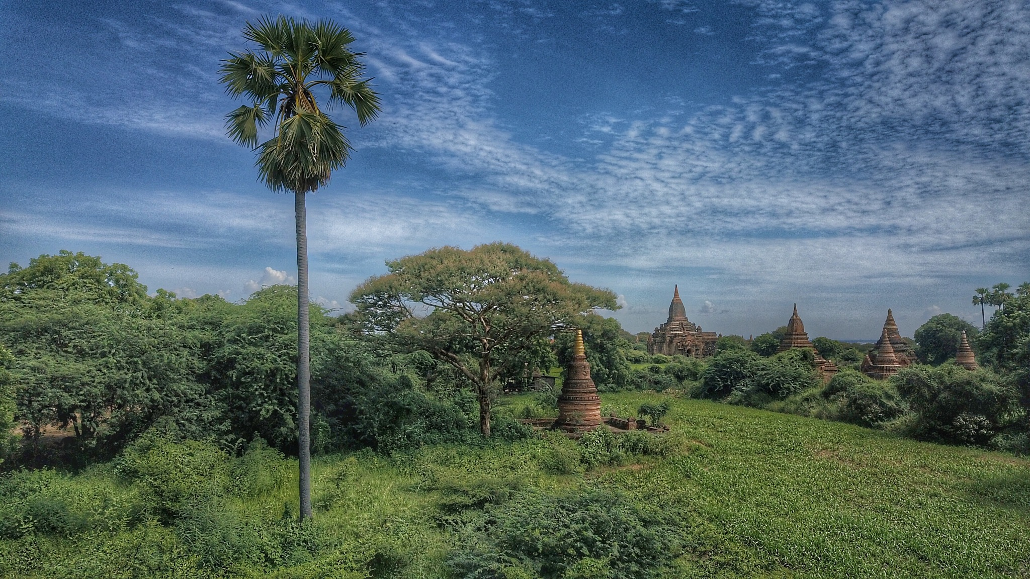 Photo in Landscape #myanmar #burma #bagan