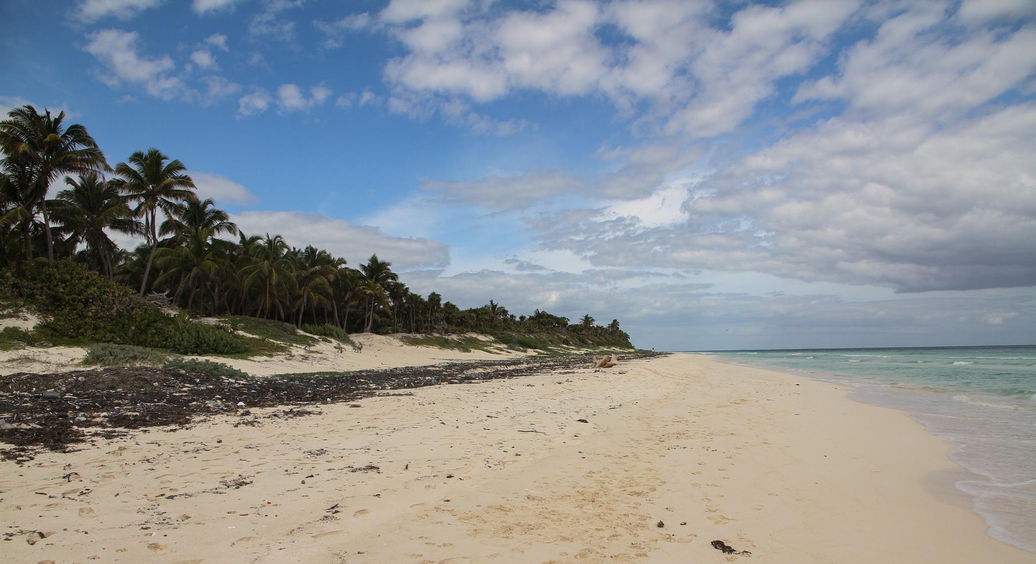 Beach Front by ZBir