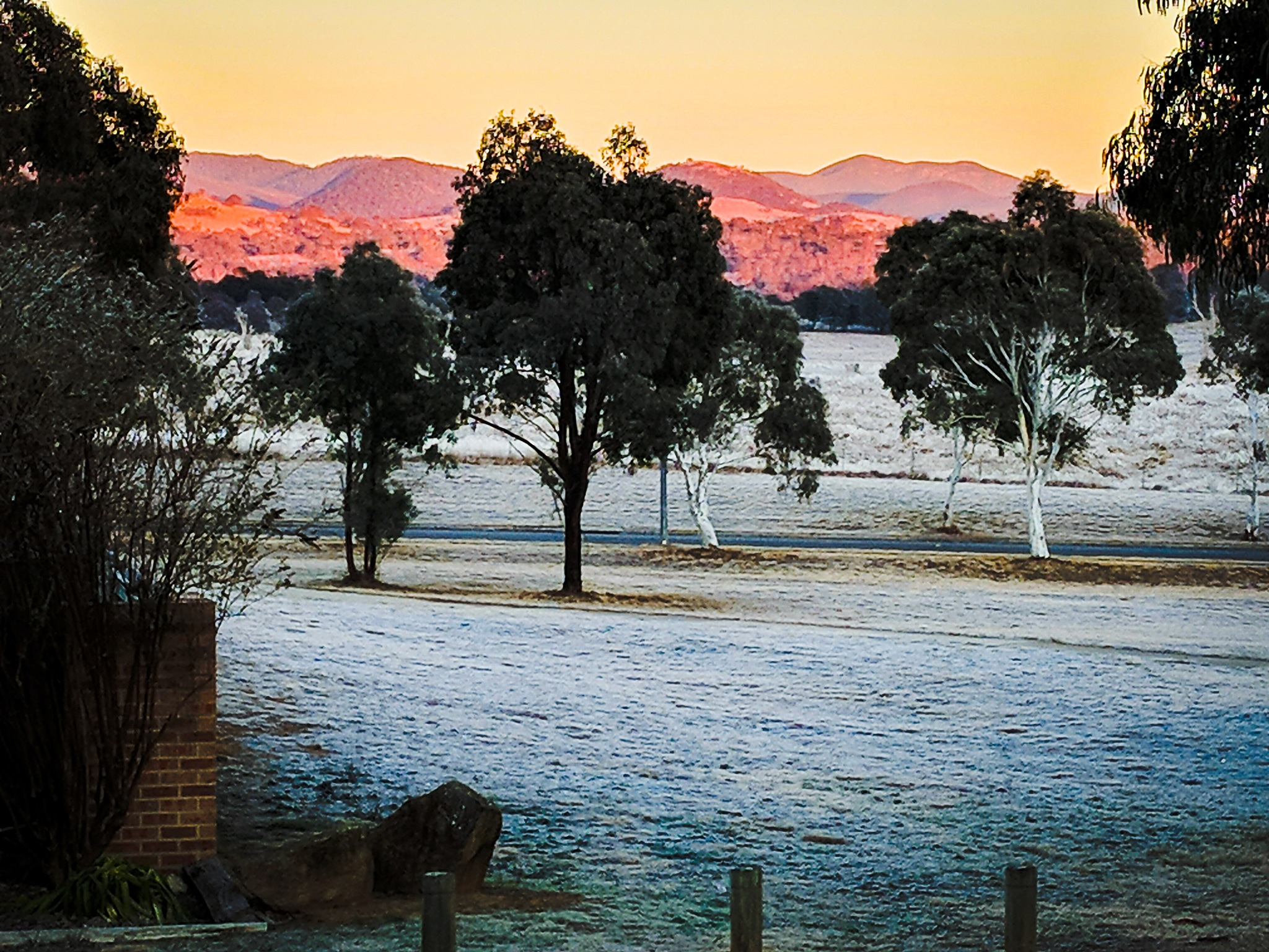 A cold and frosty morning by Jeanette Richmond