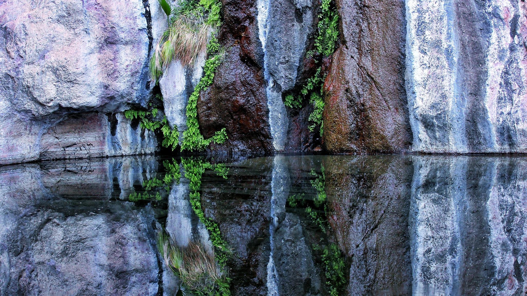 Photo in Random #nature #desert #hiking #outdoor #visit méxico