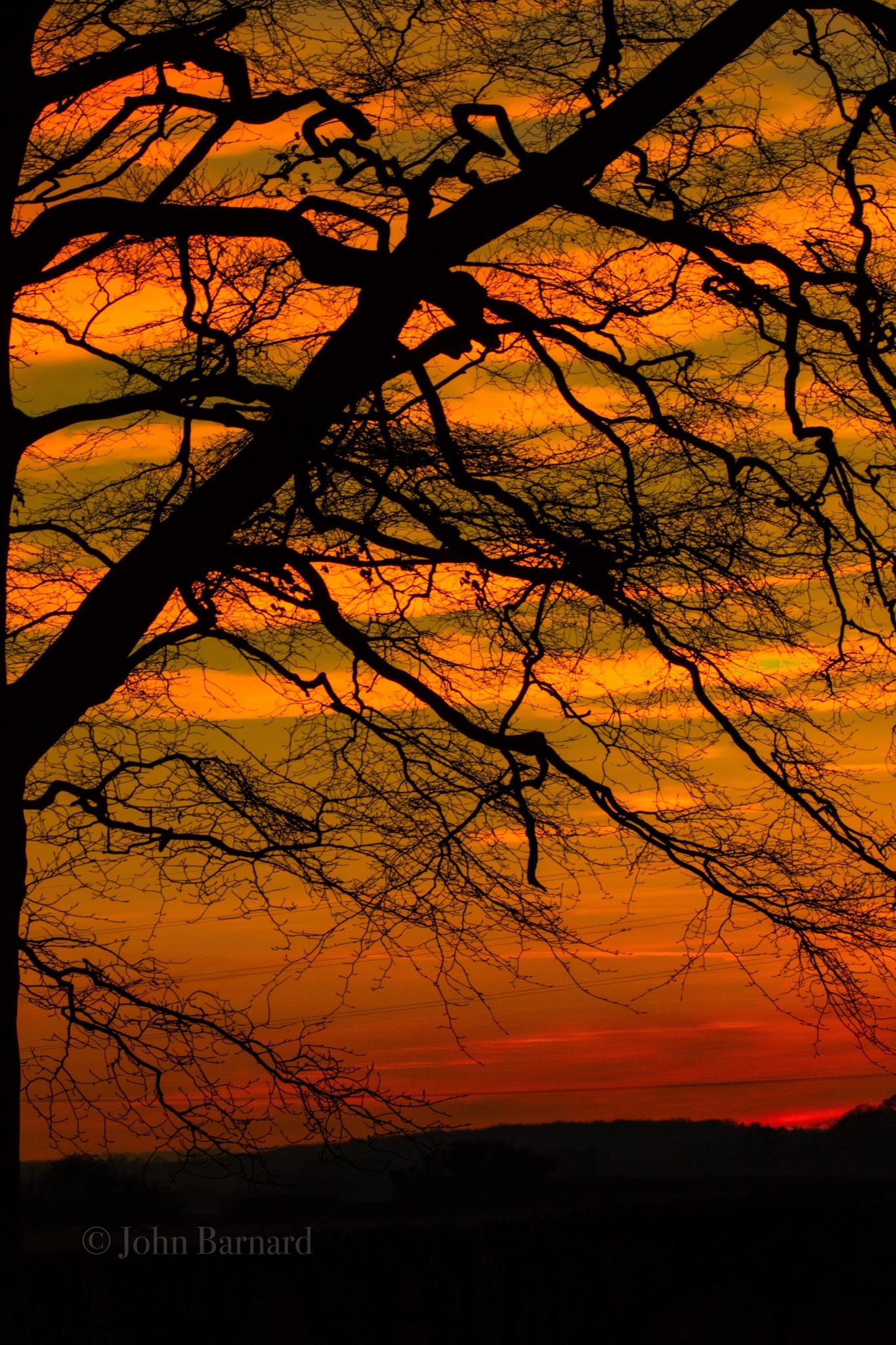 Photo in Landscape #sunset #silhouette #landscape