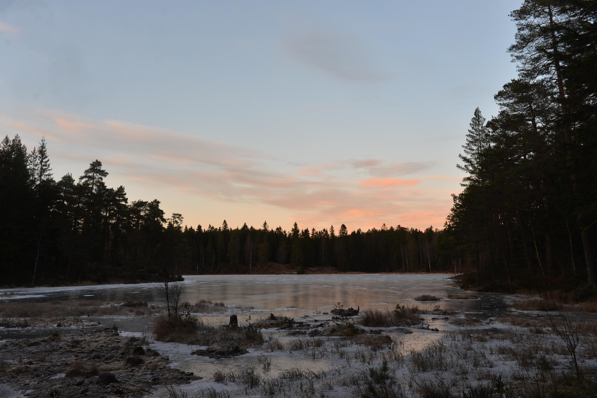 Svartkulp lake - frozen until summer by E Pedersen