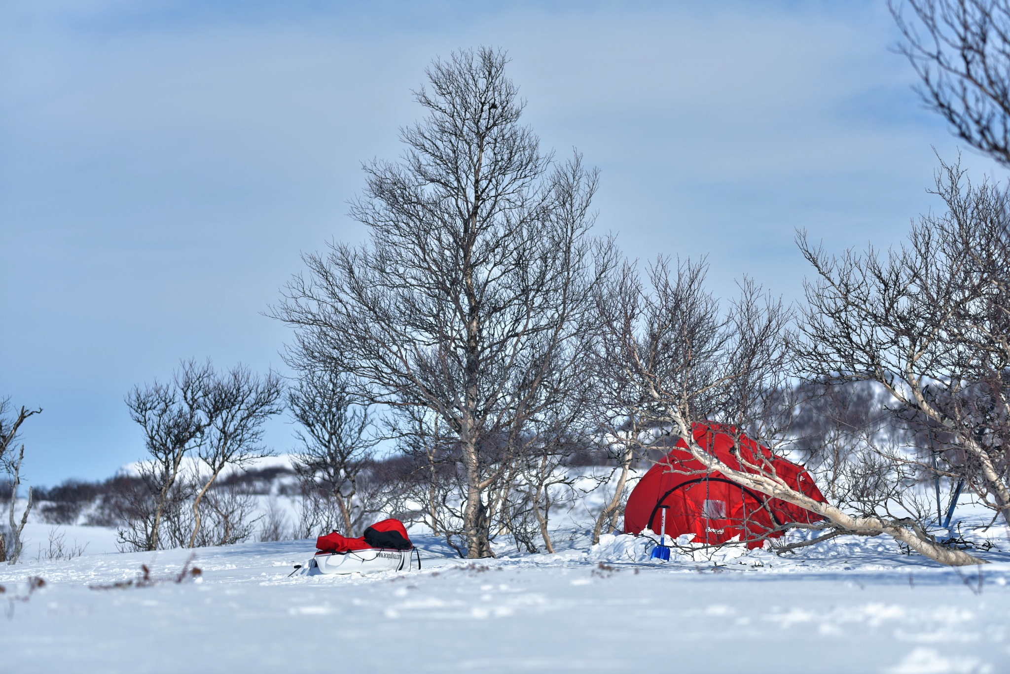 Protected camp site - threes breaking the wind by E Pedersen