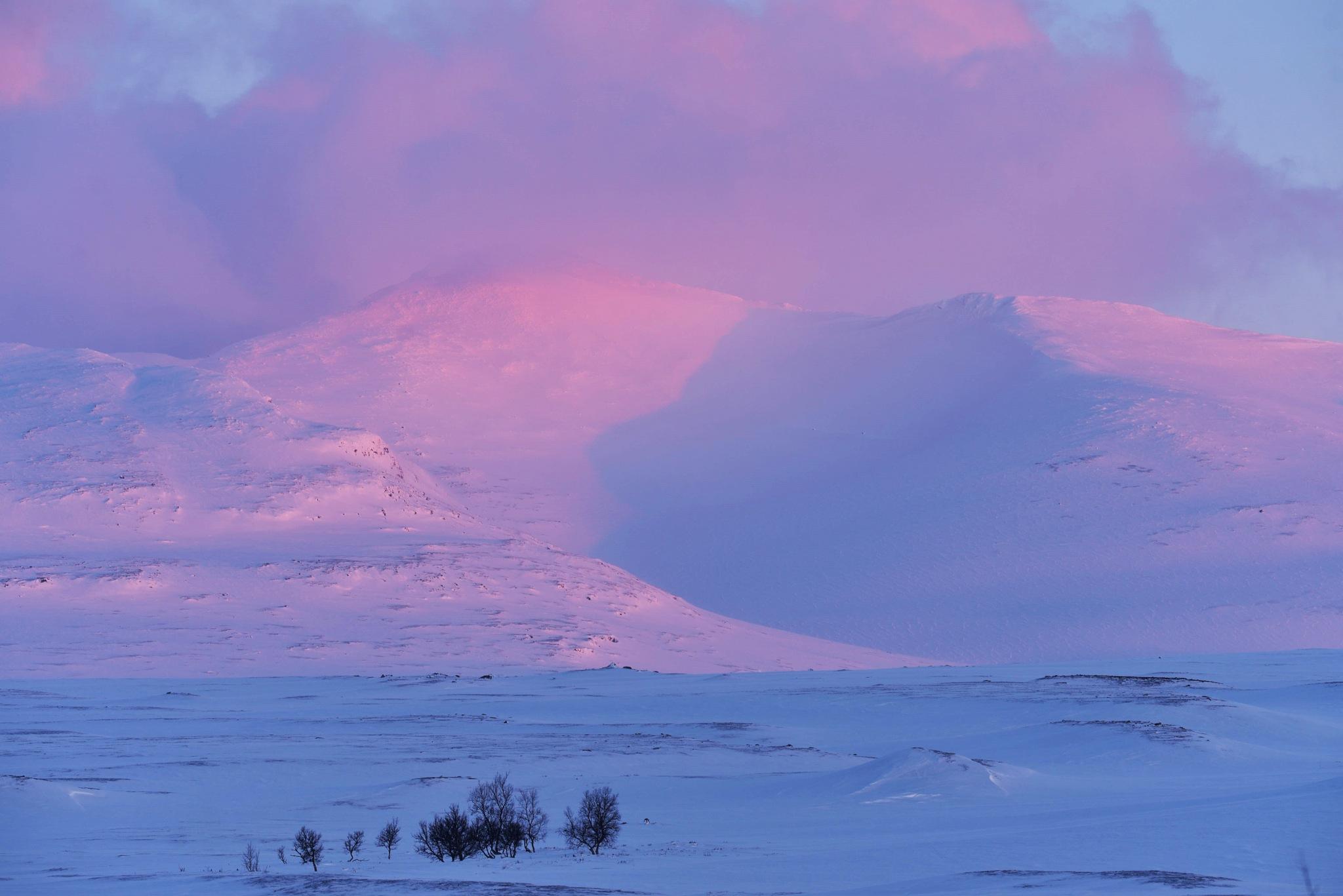 Just before sunset by E Pedersen