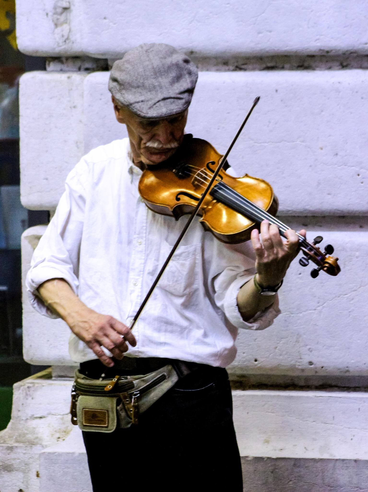 Violin in the Park by Curtis Egan